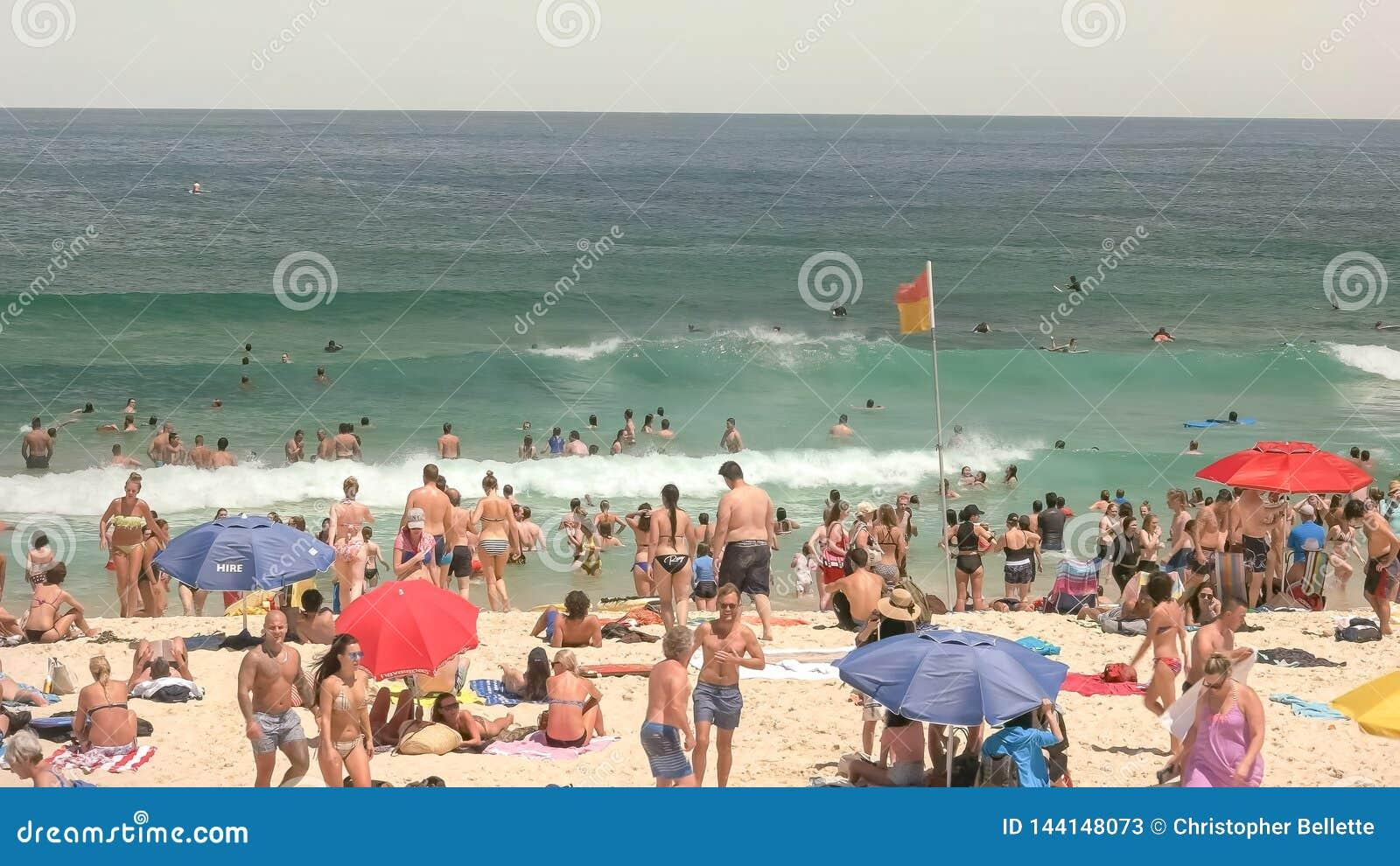 SYDNEY, AUSTRALIË - JANUARI 31, 2016: zwemmers en strandgoers bij bondistrand van Sydney