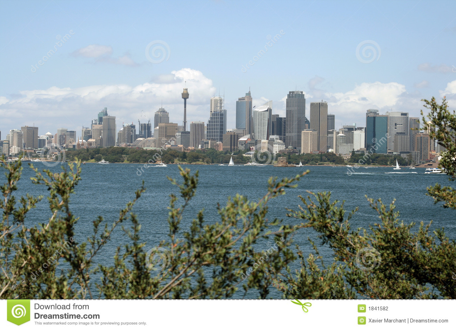 Sydney city landscape stock photography image 1841582 for Landscaping sydney