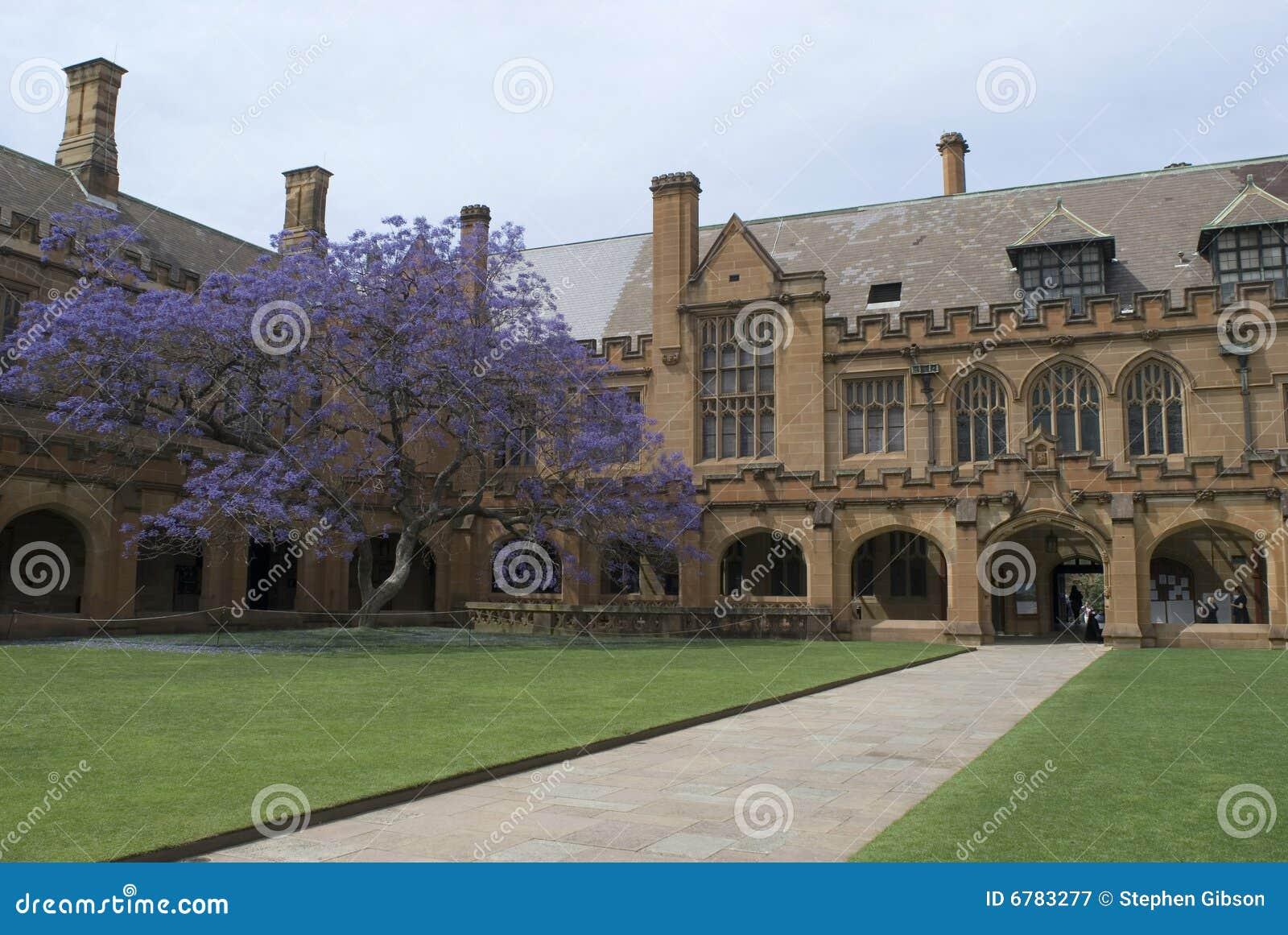 Sydney university quadrangle royalty free stock for Architecture adelaide uni