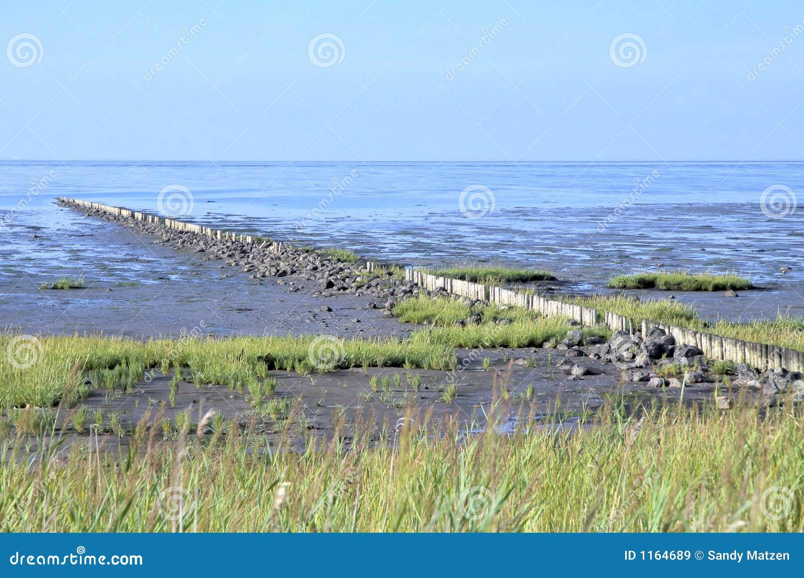 Download Sylt Landscape 2 stock image. Image of landscape, land - 1164689