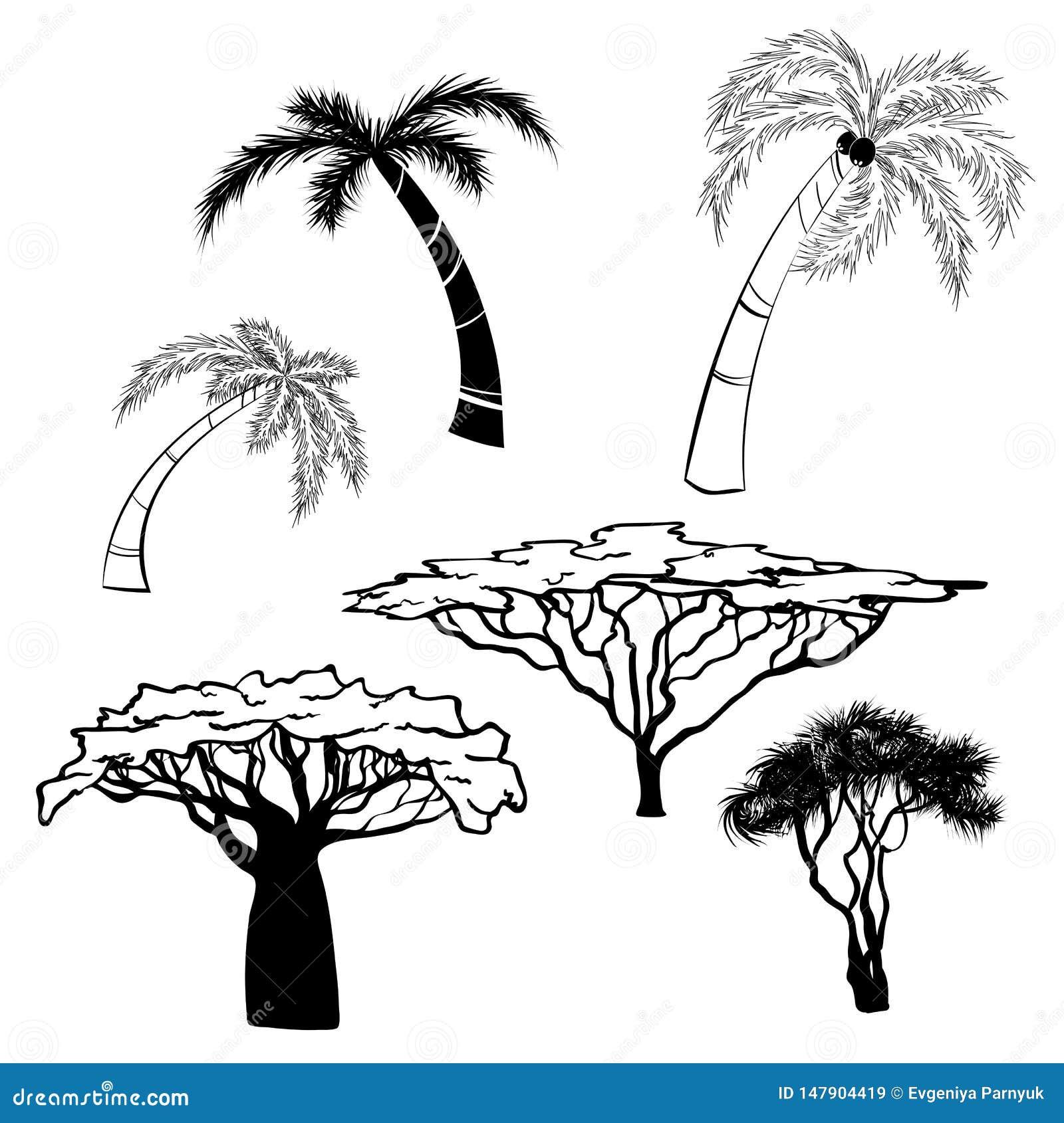 Sylwetka Africa drzewa