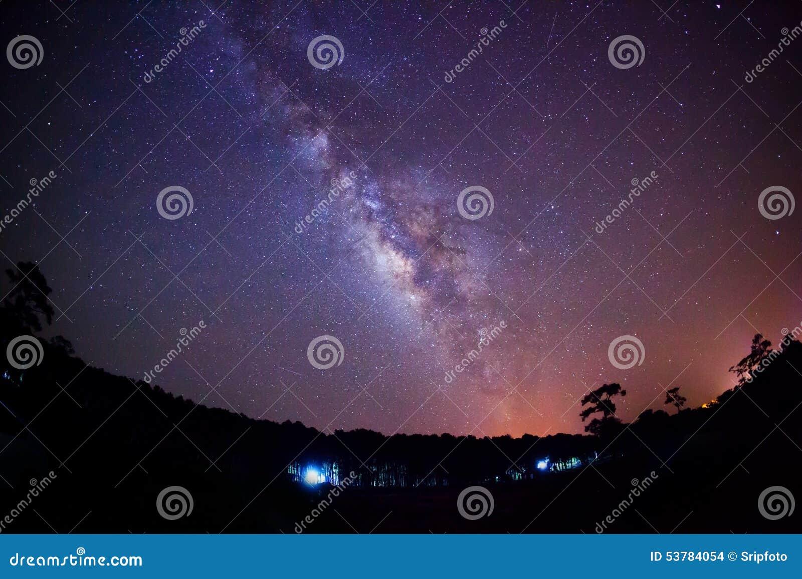 Sylwetka Drzewny i Milky sposób Długa ujawnienie fotografia