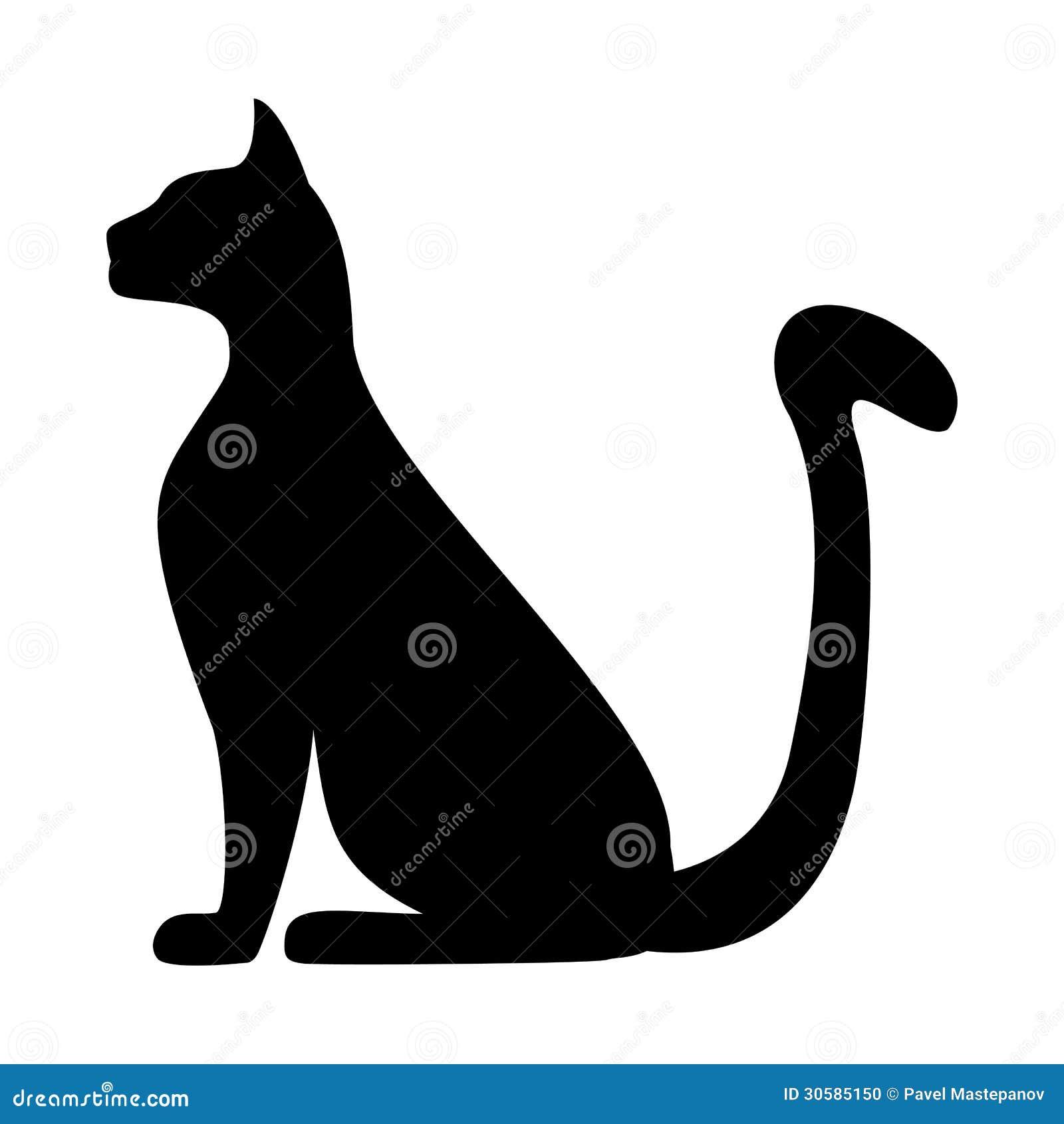 Sylwetka kot