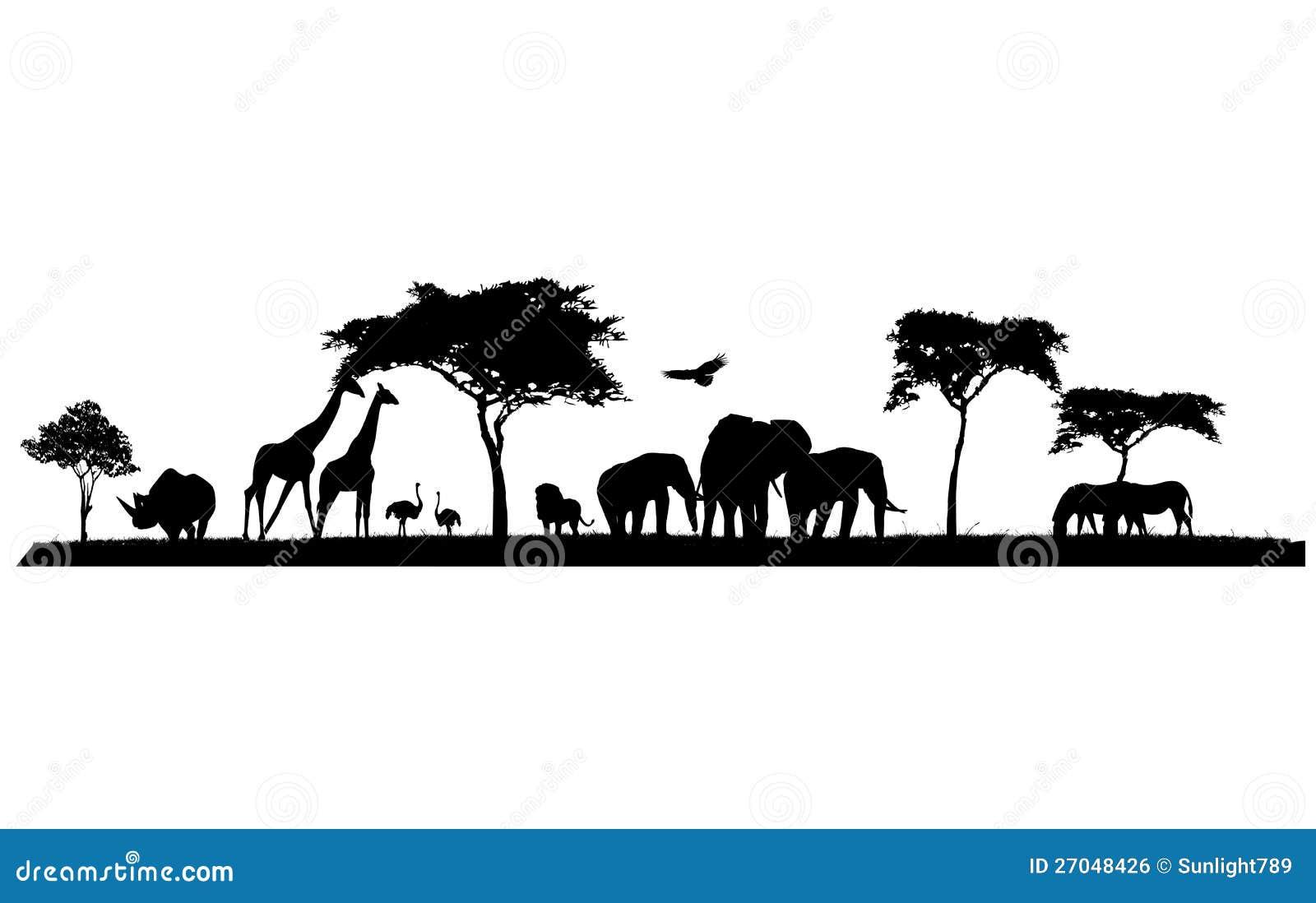 Sylwetka przyroda safari