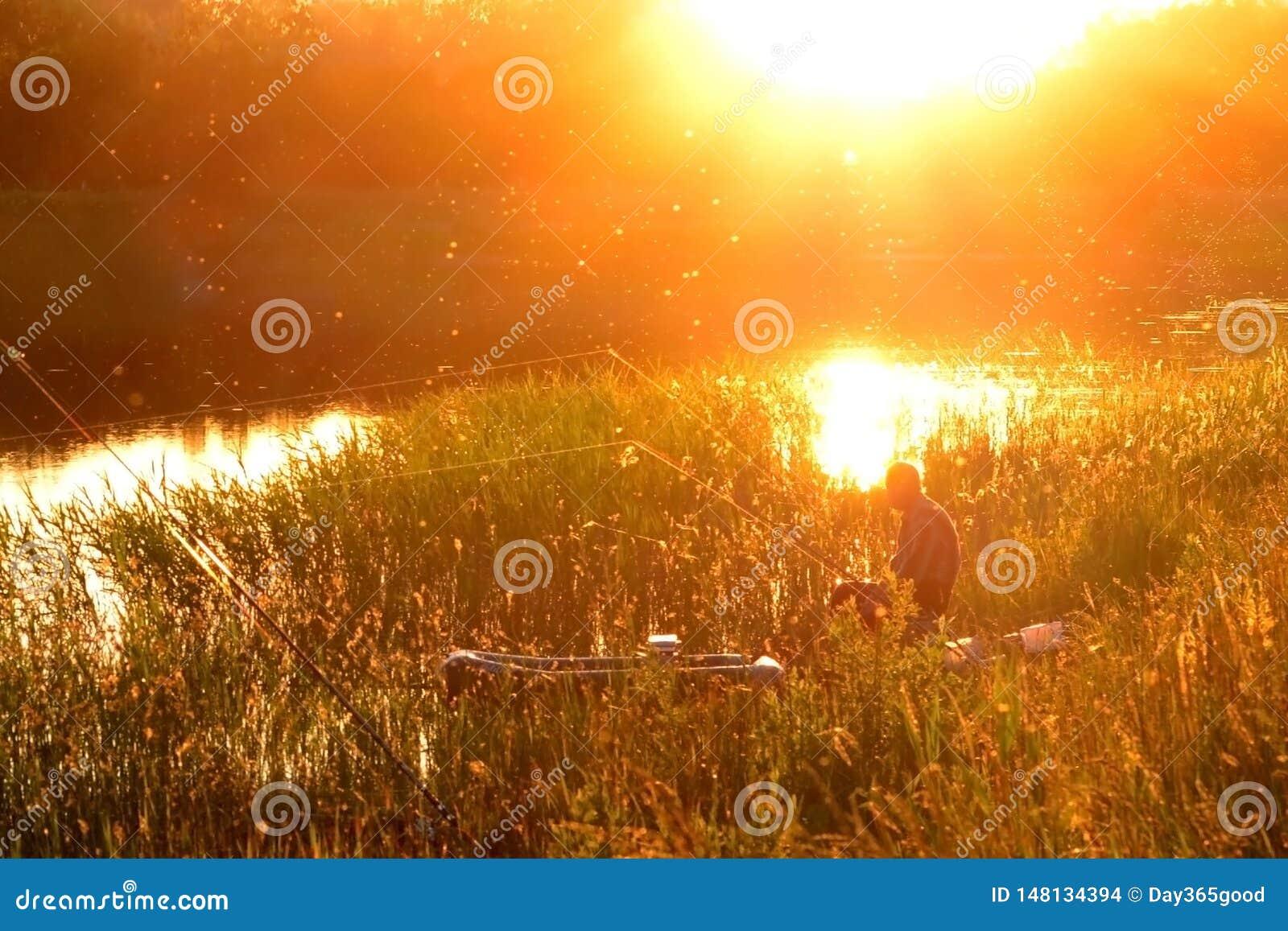 Sylwetka rybak w płochach z połowu prąciem Łowić przy zmierzchem lub wschód słońca Odbicie słońce w jeziorze