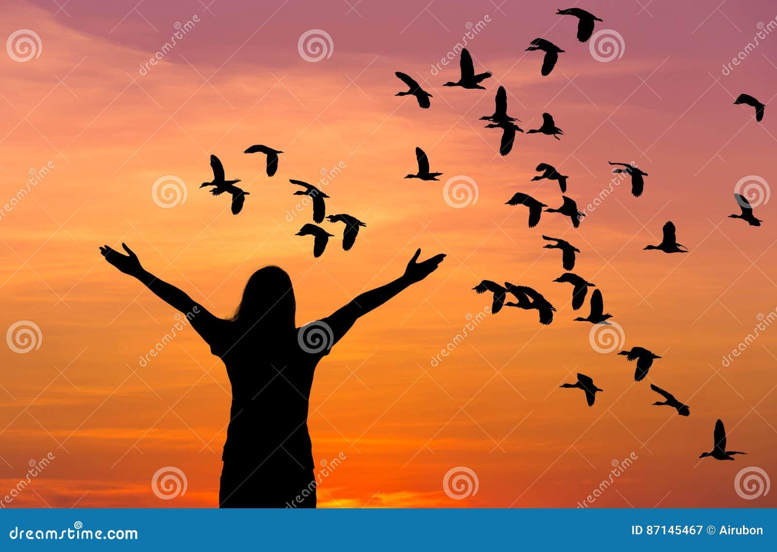 Sylwetki kobiety pozycja podnosząca w górę ręk podczas kierdla lesser świszczący kaczki latanie na zmierzchu