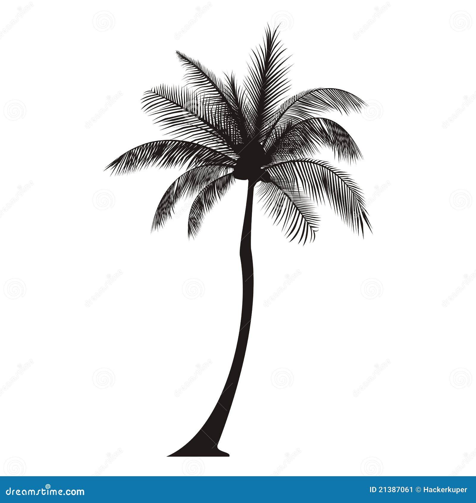 Sylwetki palmowy drzewo