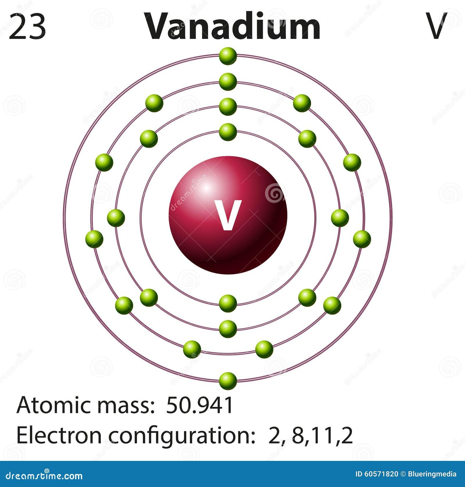 Symbol And Electron Diagram For Vanadium Stock Vector