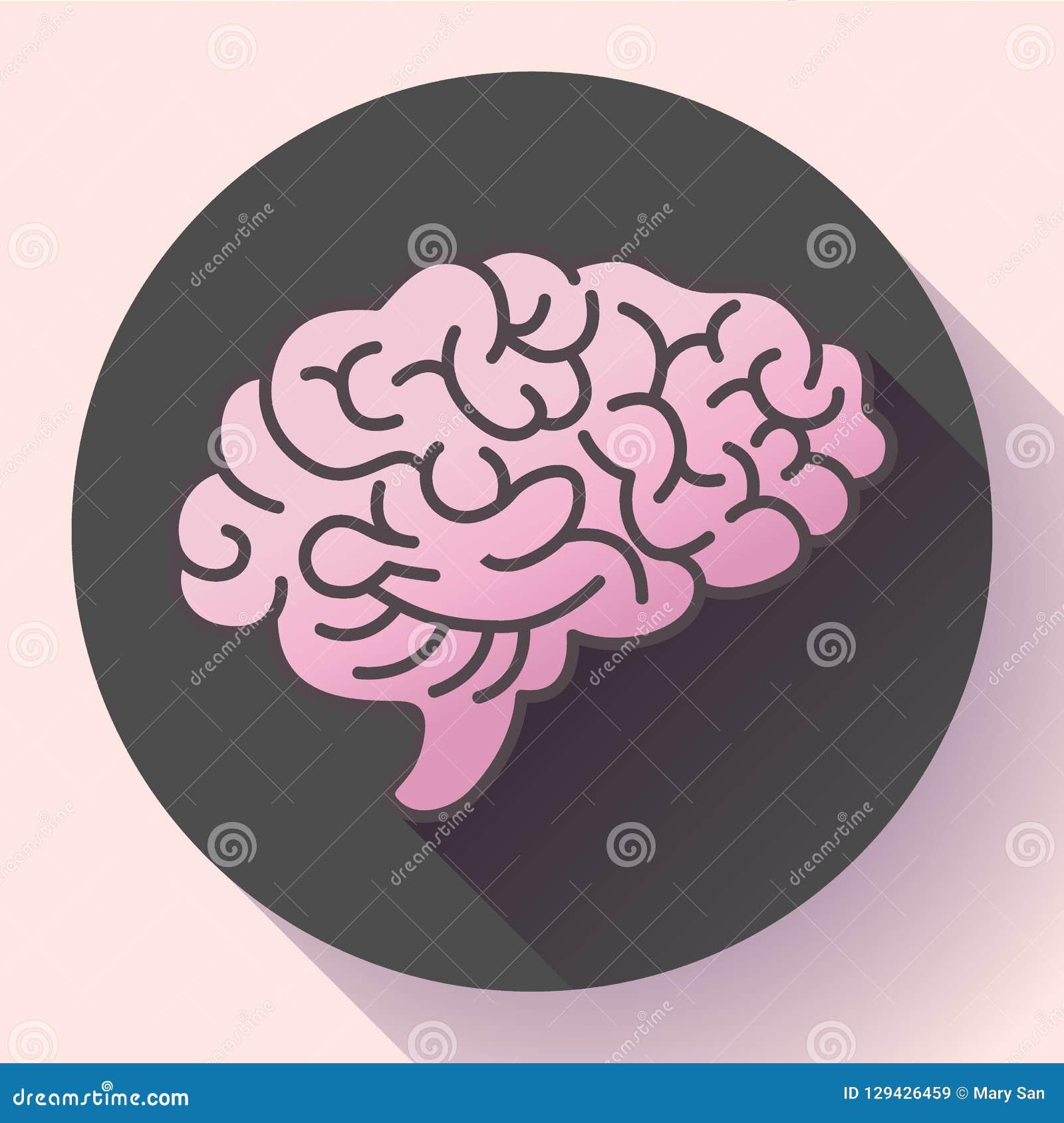 Symbol för mänsklig hjärna, symbol av intellekt, studie, lära och utbildning