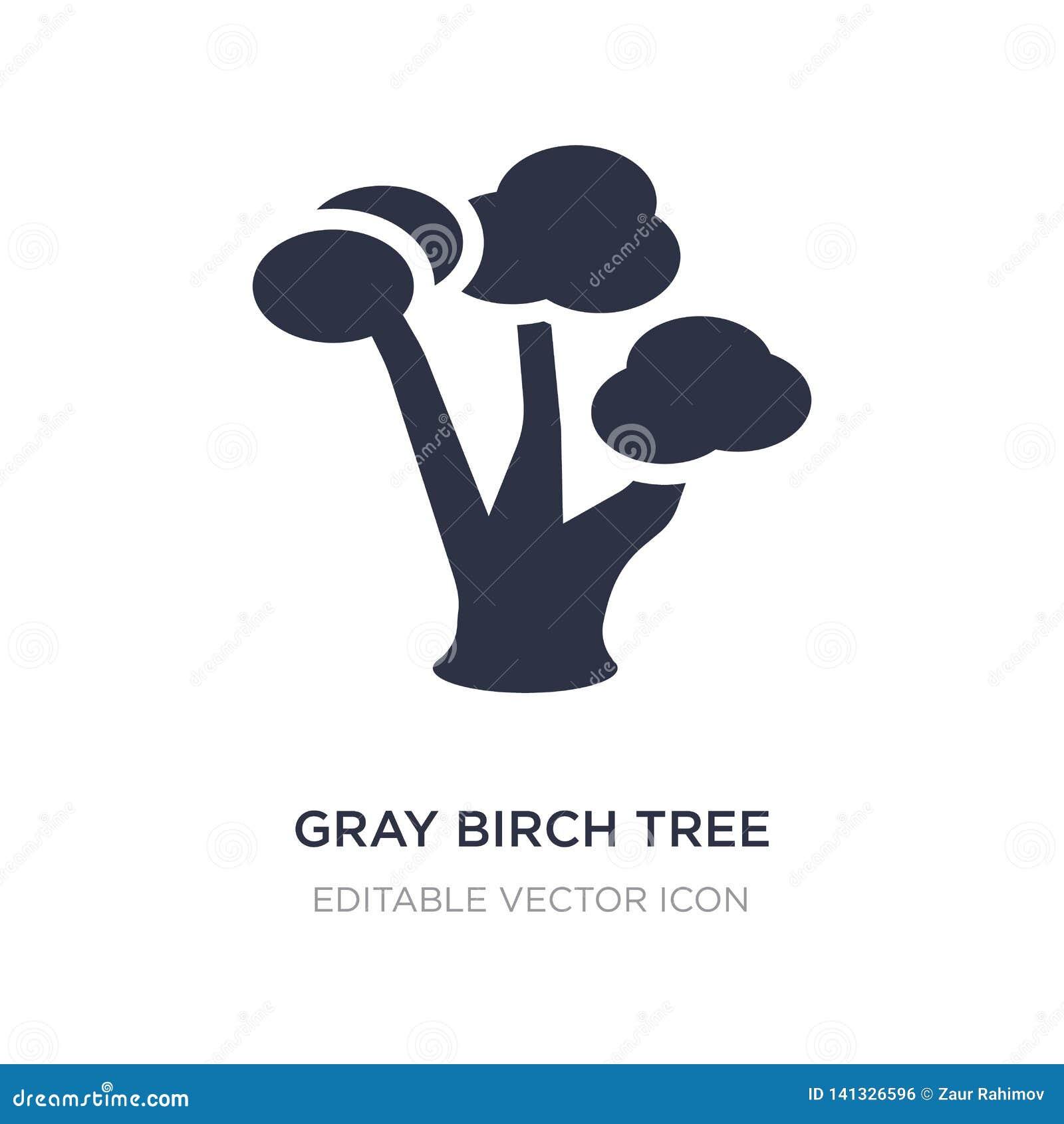 Symbol för träd för grå björk på vit bakgrund Enkel beståndsdelillustration från naturbegrepp