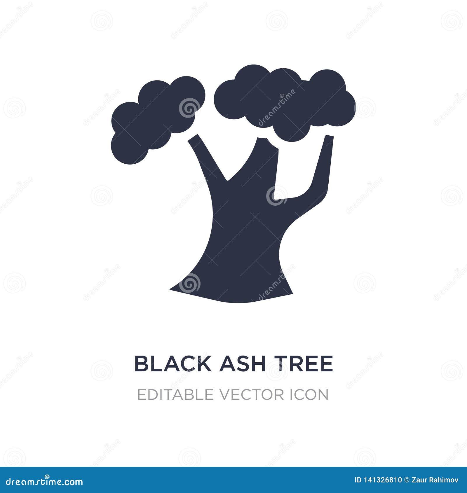 Symbol för träd för svart aska på vit bakgrund Enkel beståndsdelillustration från naturbegrepp