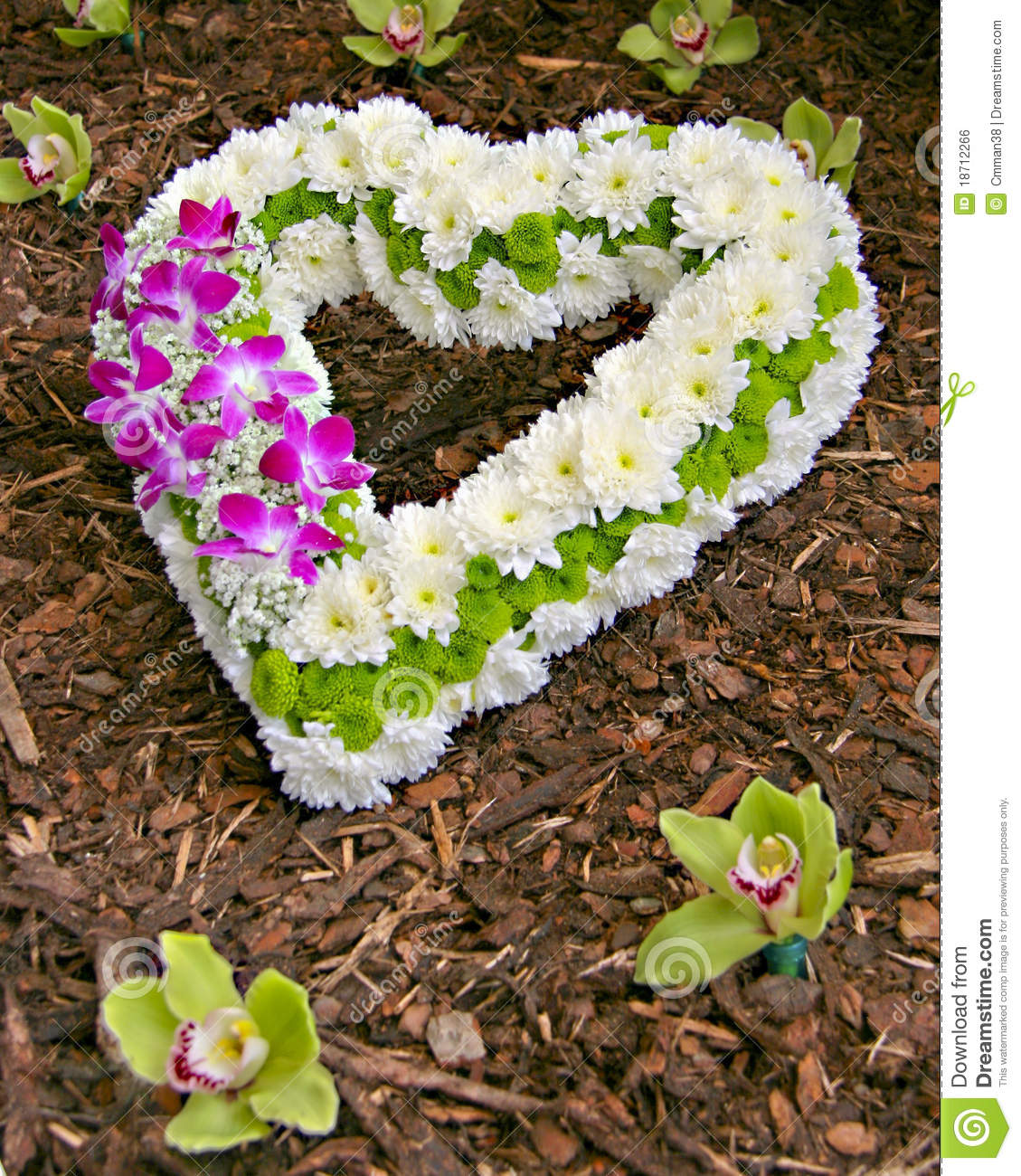 Symbol of love flower heart stock photo image of organic grow symbol of love flower heart buycottarizona Image collections