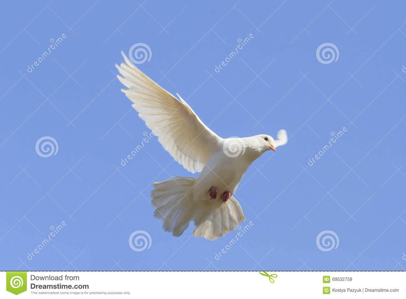 Symbol Of Peace Is Flying In The Sky Stock Image Image Of Letter