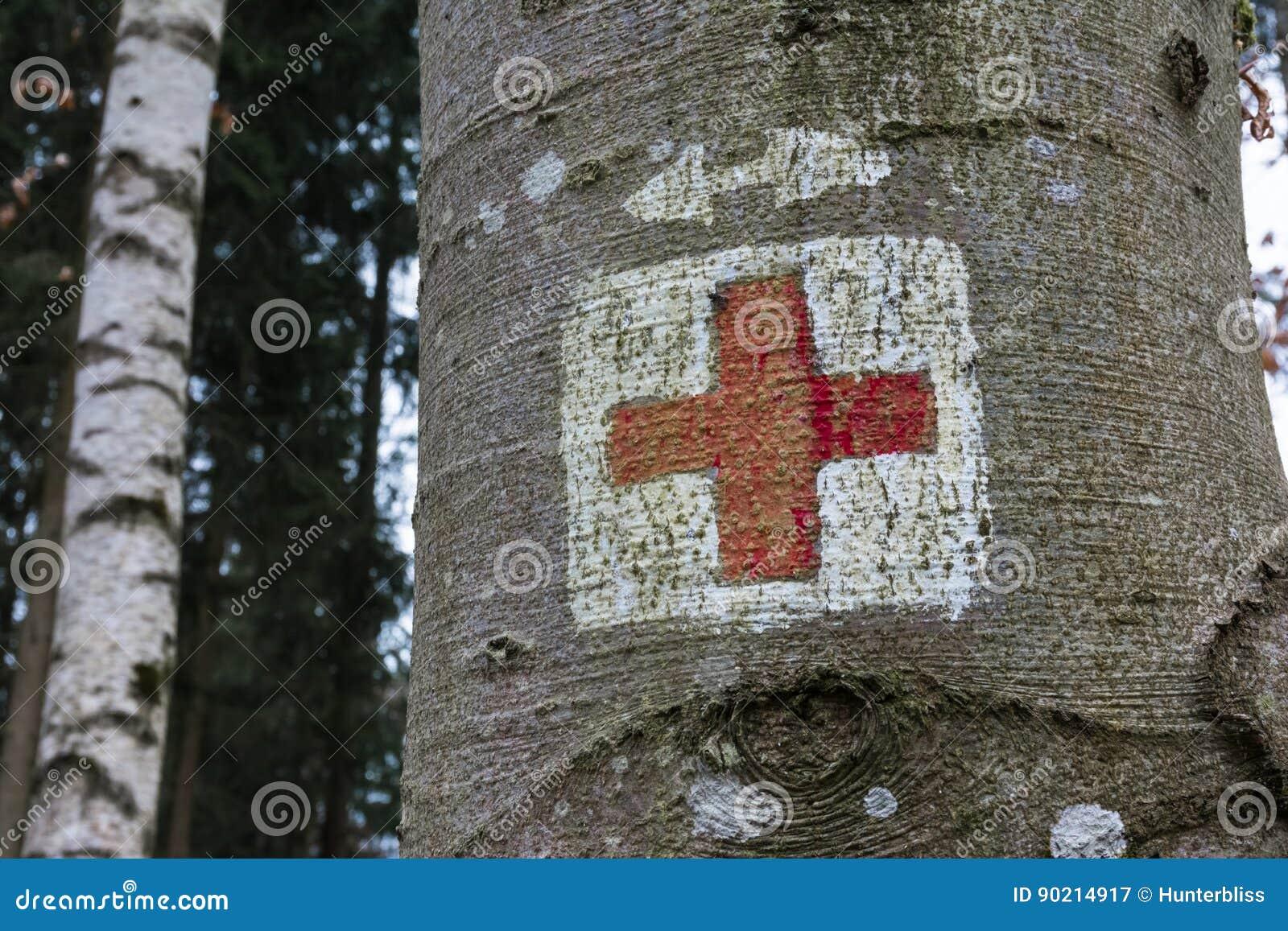 Symbole médical de secours de Croix-Rouge peint sur la forêt de tronc d arbre