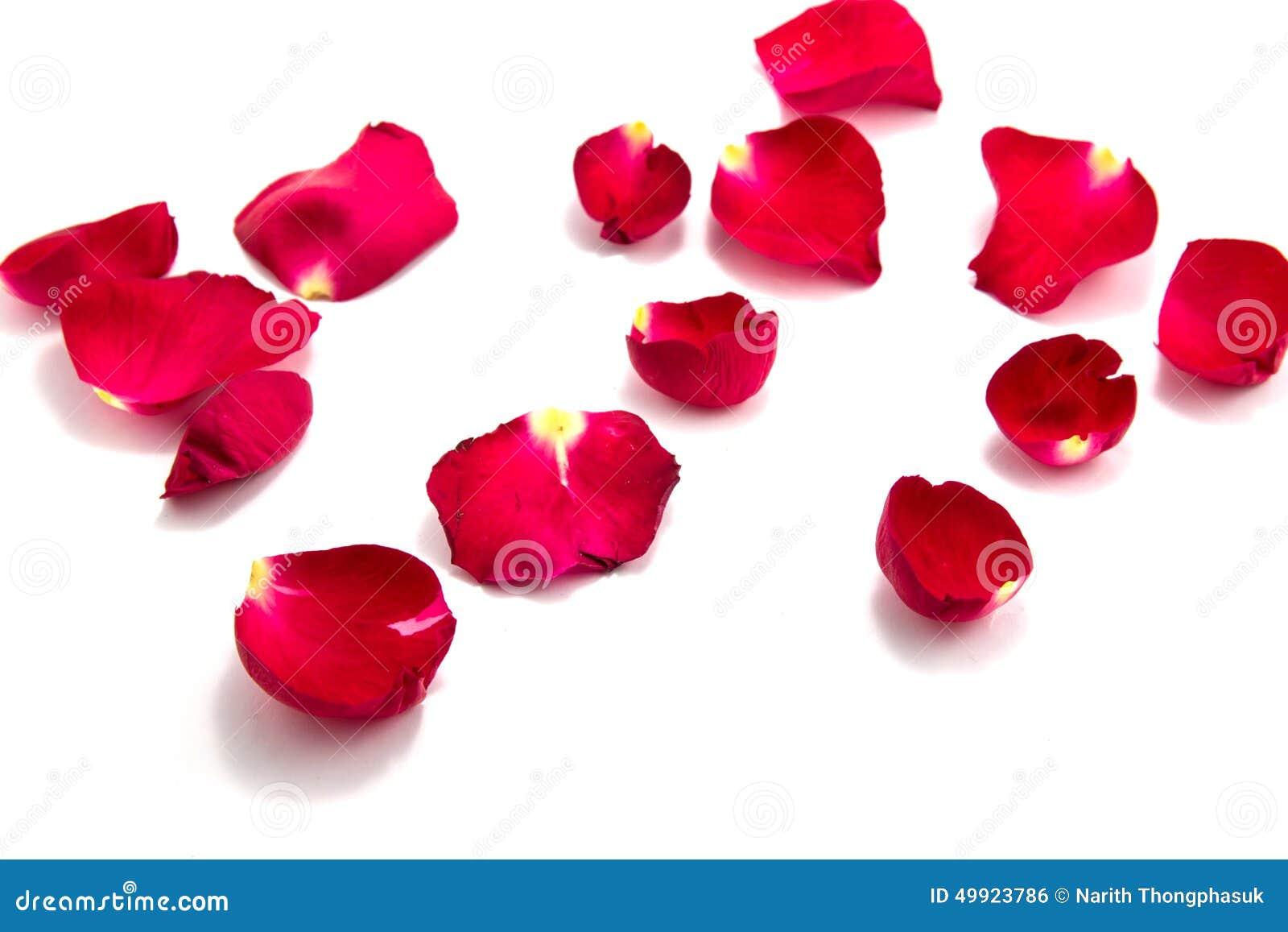 Symbolet av förälskelse med steg, valentins dag