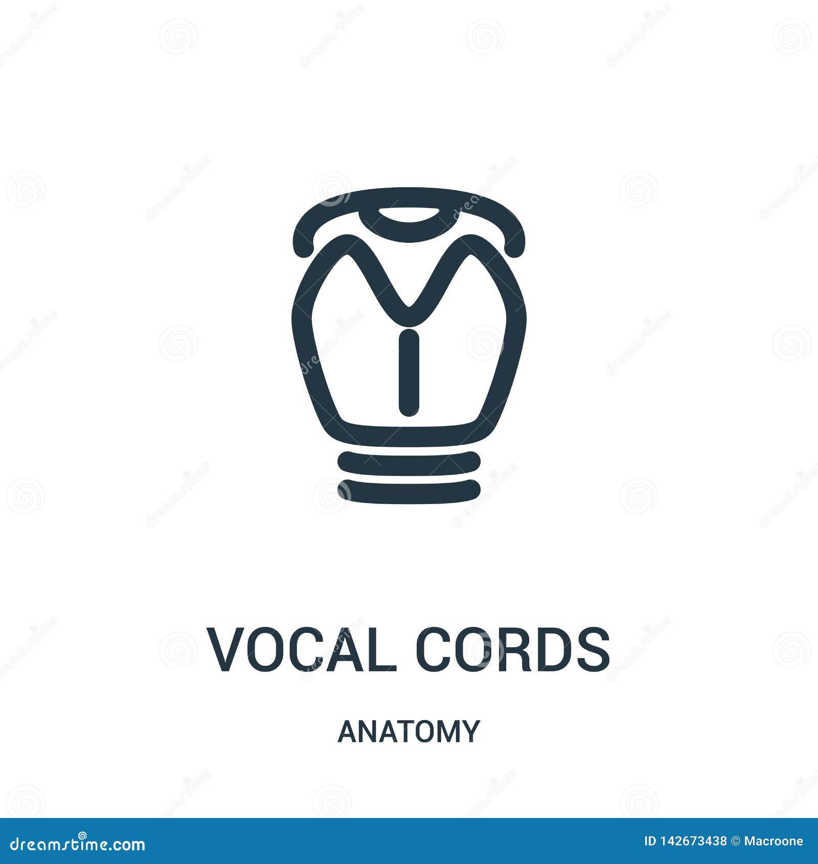 Symbolsvektor för röst- kablar från anatomisamling Tunn linje för översiktssymbol för röst- kablar illustration för vektor Linjär