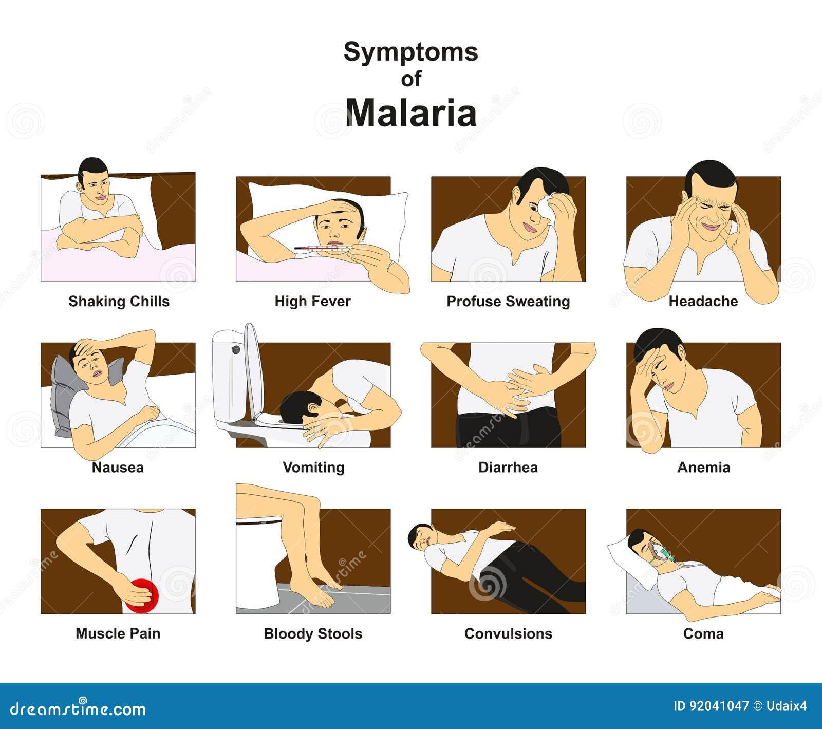 Symptome von Malaria