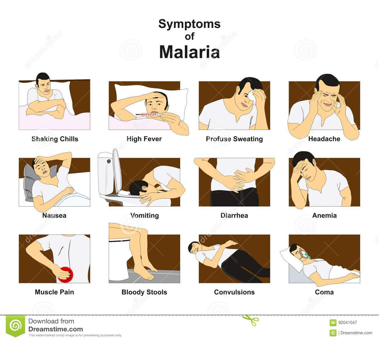 Symptoms Of Malaria Stock Vector  Illustration Of Health
