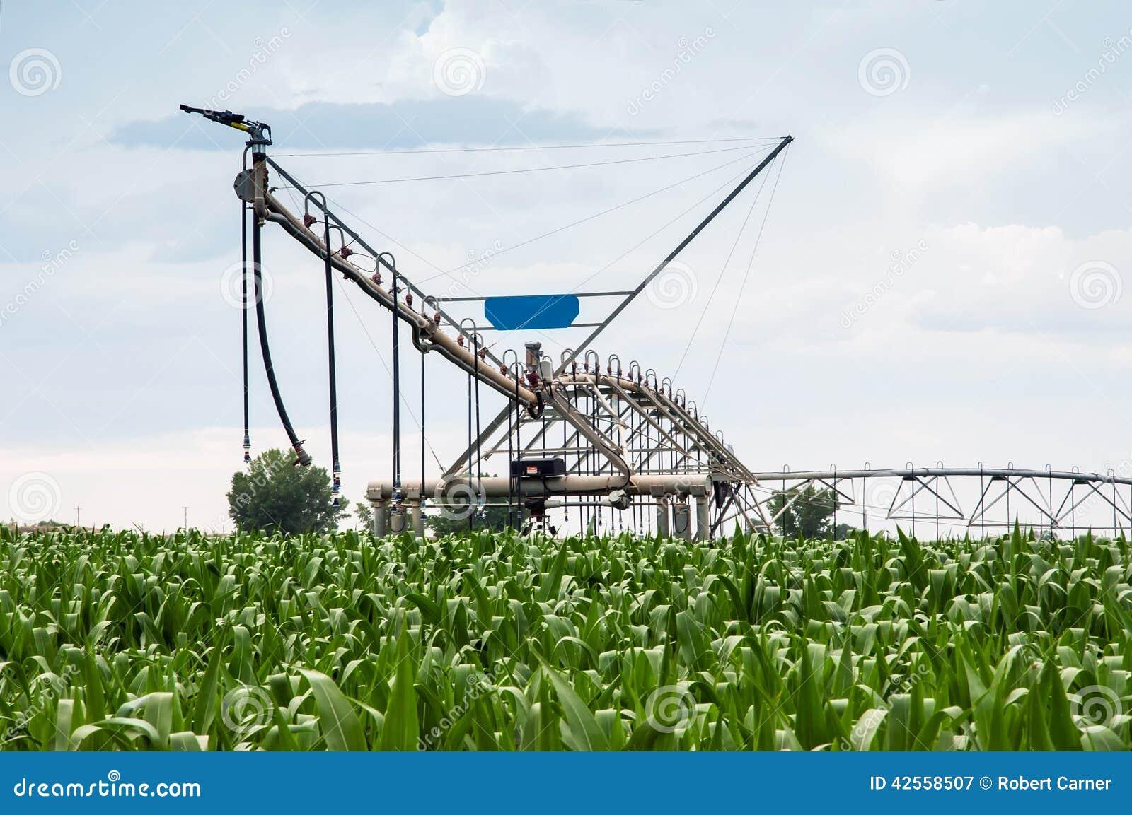 Syst me d 39 irrigation central de pivot dans le champ de ma s photo stock - Systeme d irrigation maison ...
