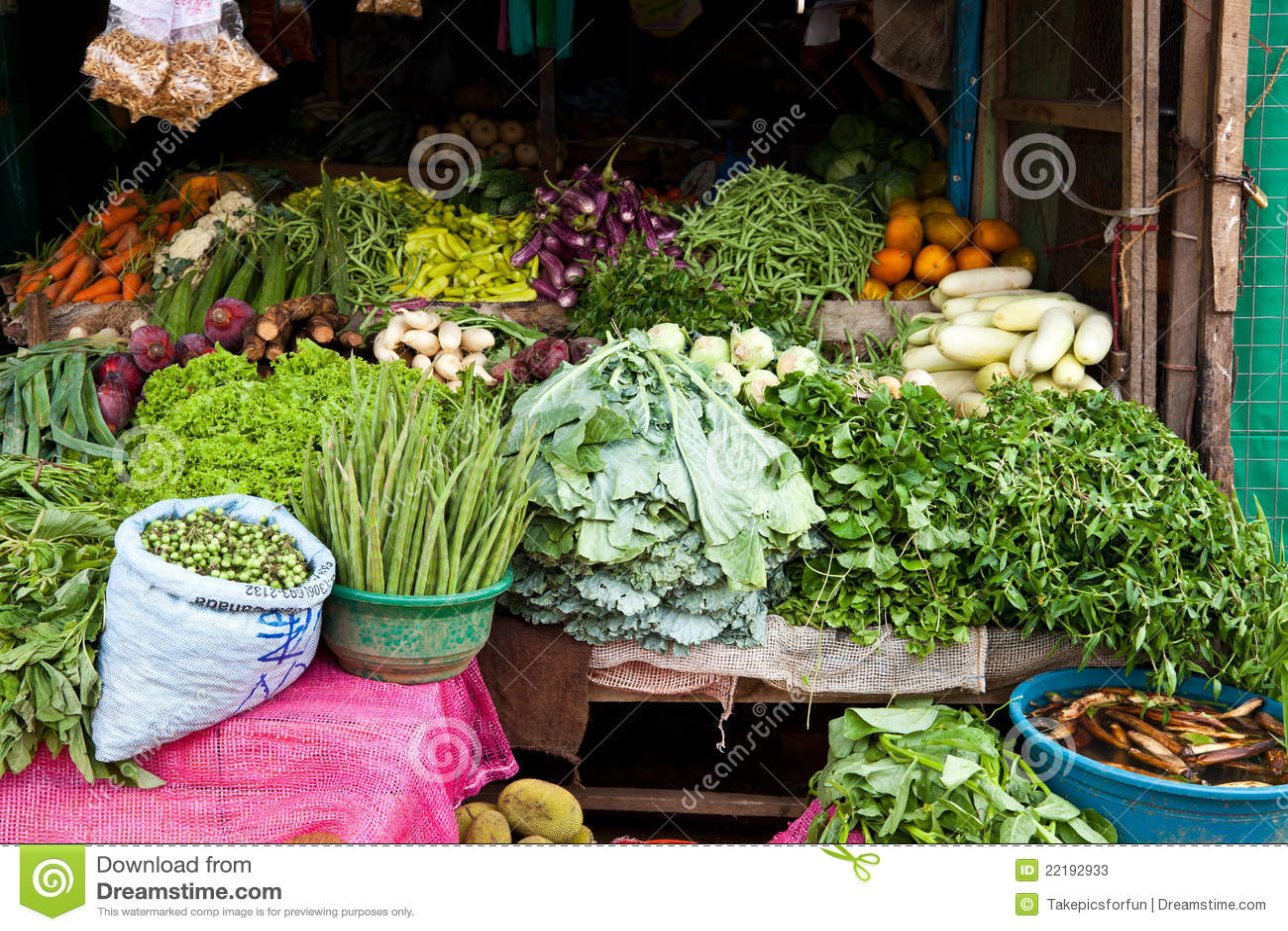 Système végétal au Sri Lanka
