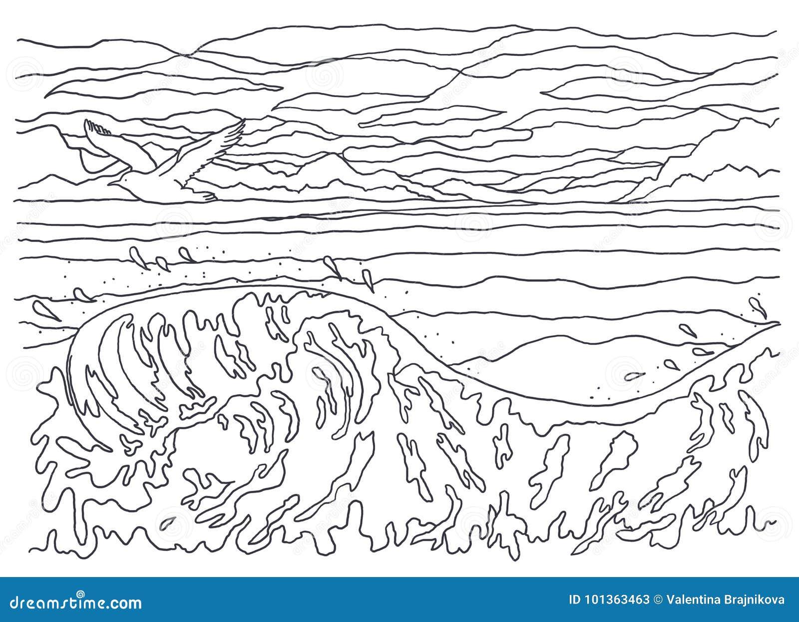 Szablon Dla Barwić Krajobrazowy Obraz Morze Fala Ptak Seagull
