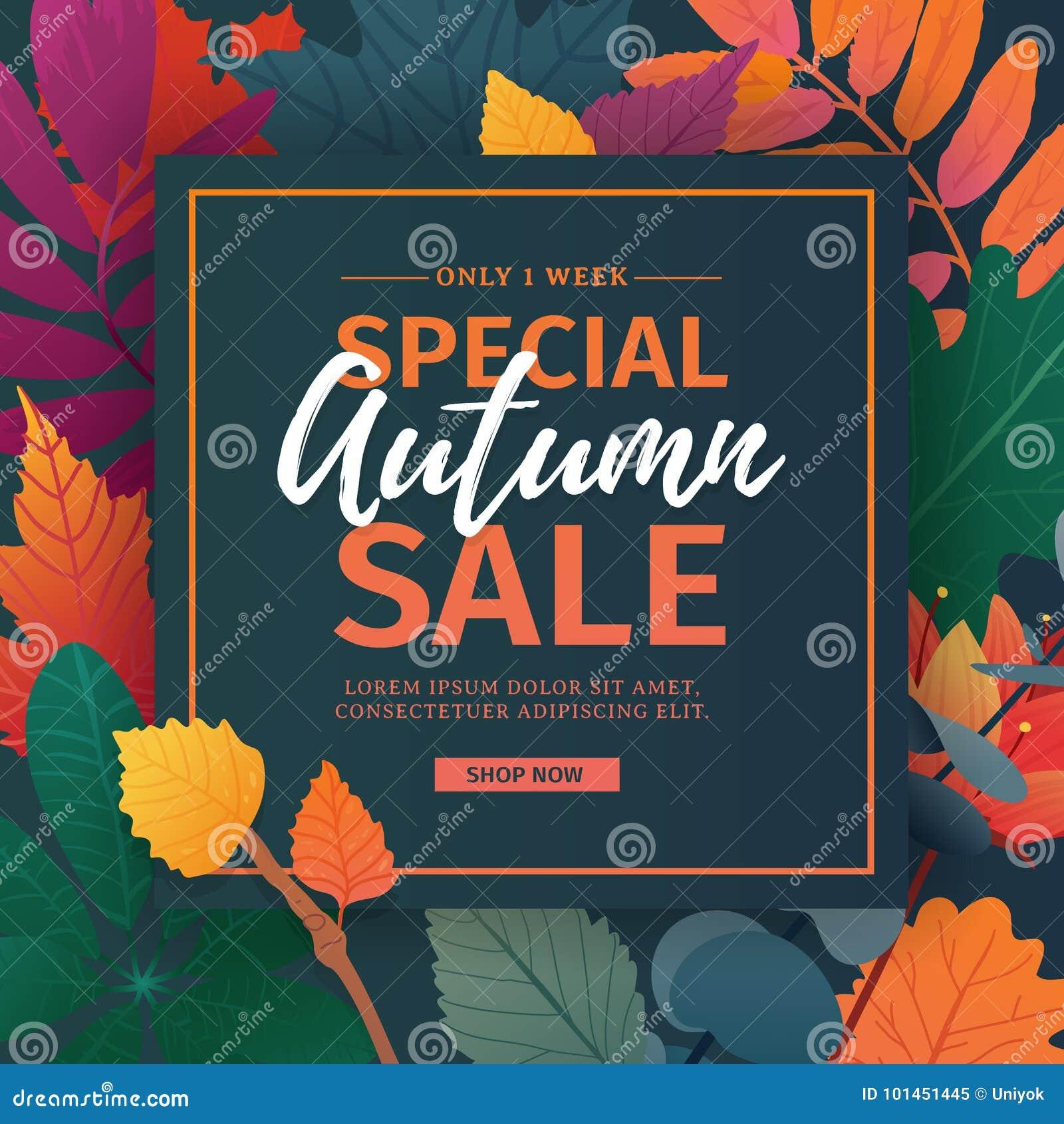 Szablonu projekta rabata sztandar dla jesień sezonu Plakat dla specjalnej spadek sprzedaży z kwiatem i ziele, jesienny liść