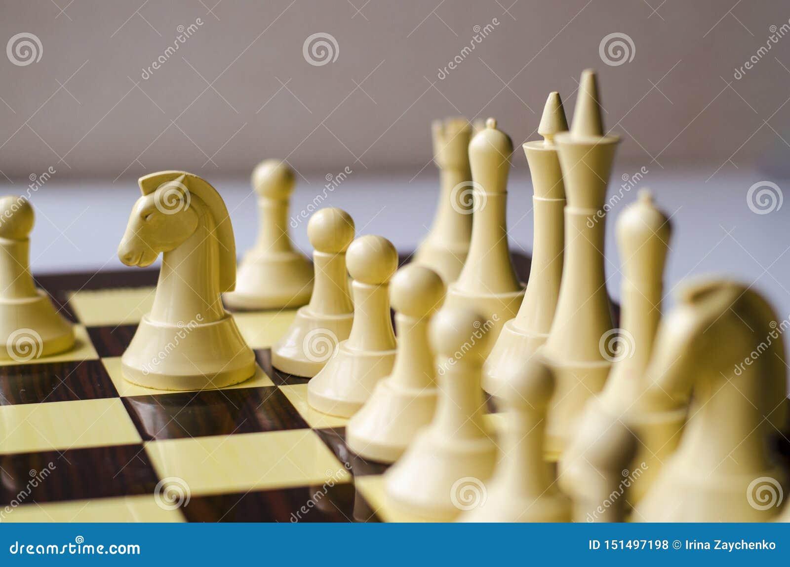 Szachowa gra, koń jest kawałkiem w ostrości