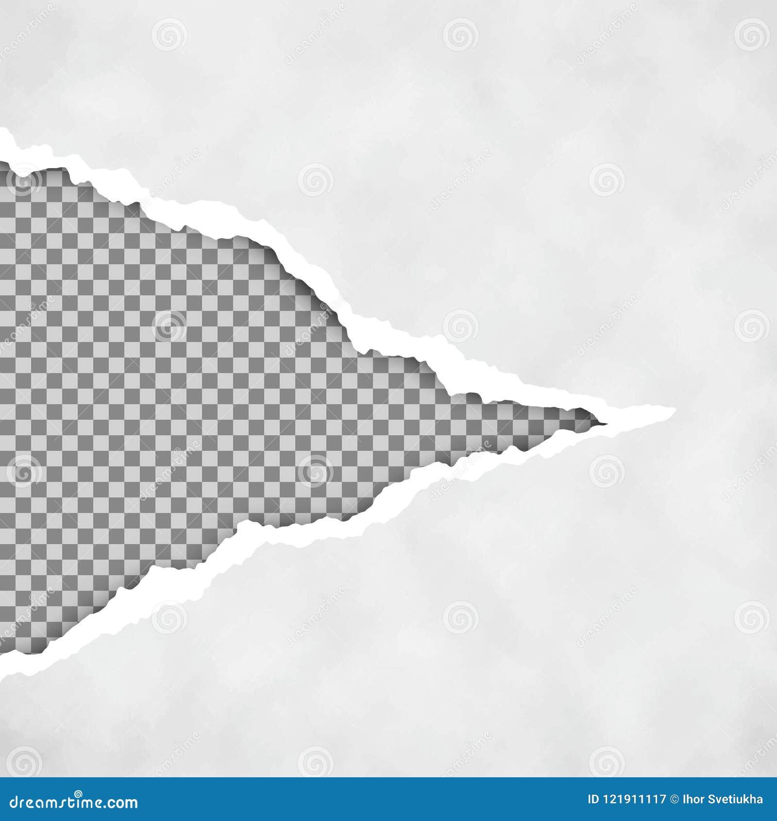 Szarość rozdzierać otwierają papier z przejrzystym tłem drzejący papierowy prześcieradło drzejący krawędź papier struktura papier