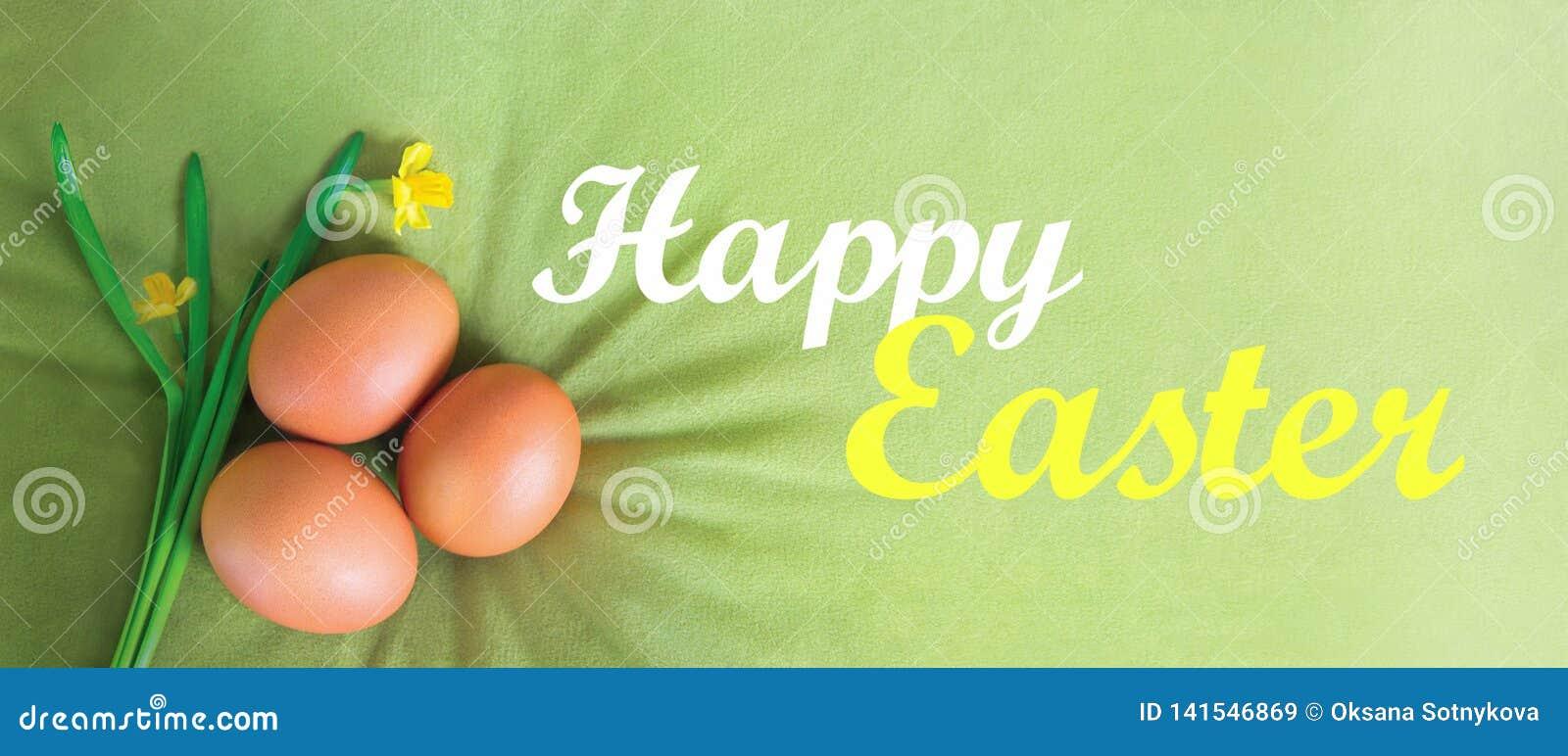 Szczęśliwy Wielkanocny tekst, pisze list na aksamicie, oliwce, zielonym tle z pomarańczowymi jajkami i daffodils, Ilustracyjna ka