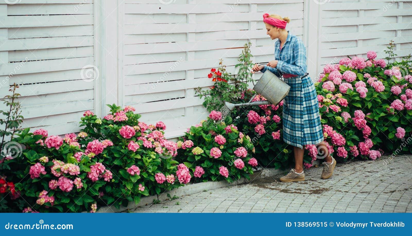 Szczęśliwa kobiety ogrodniczka z kwiatami Kwiatu podlewanie i opieka ziemie i użyźniacze Szklarniani kwiaty kobiety opieka