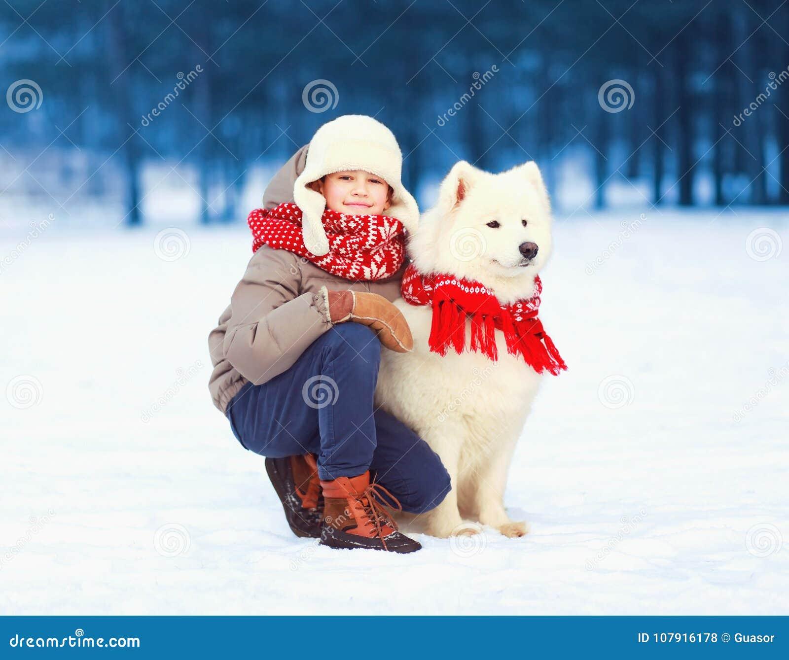 Szczęśliwa uśmiechnięta dziecko chłopiec chodzi z białym Samoyed psem w zimie