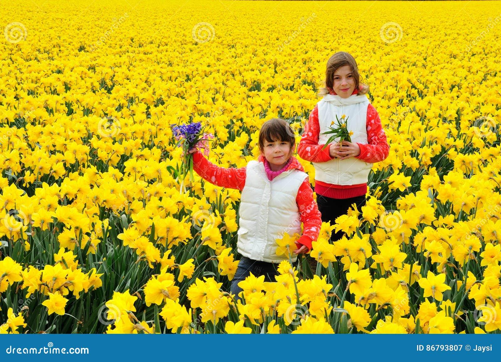 Szczęśliwi dzieciaki z wiosną kwitną na żółtych daffodils pola, dzieci na wakacje w holandiach