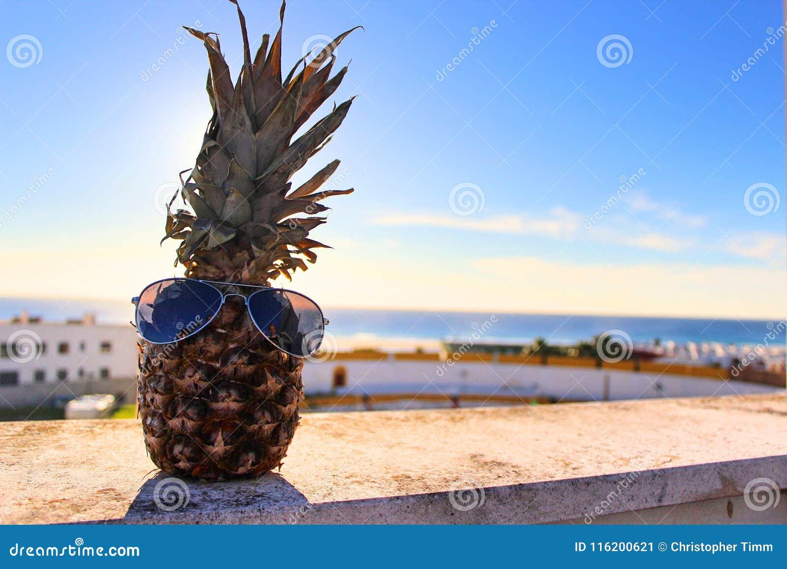 Szczęśliwy ananas z słońc szkłami
