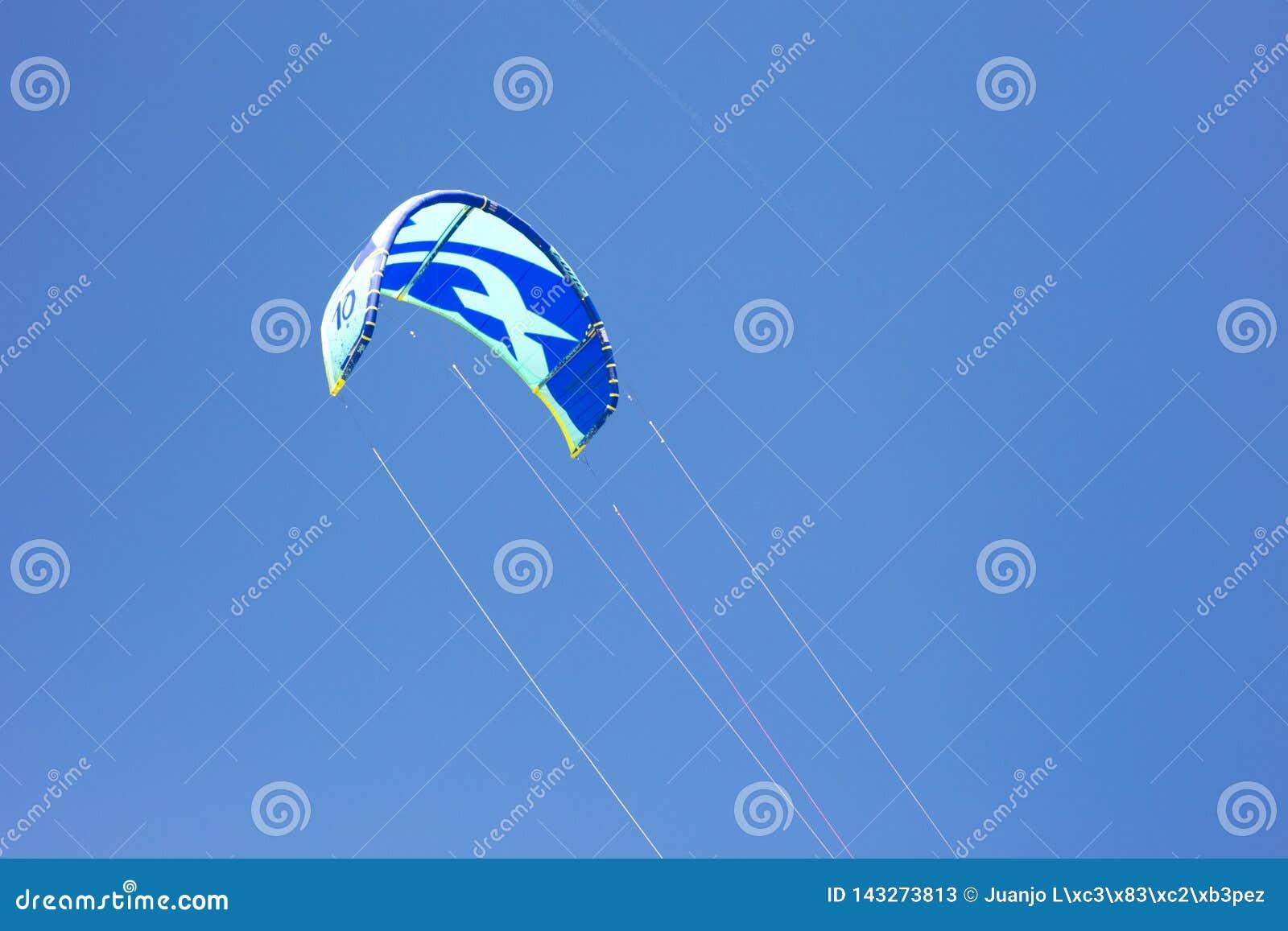 Szczegół kani latanie w niebieskiego nieba tle