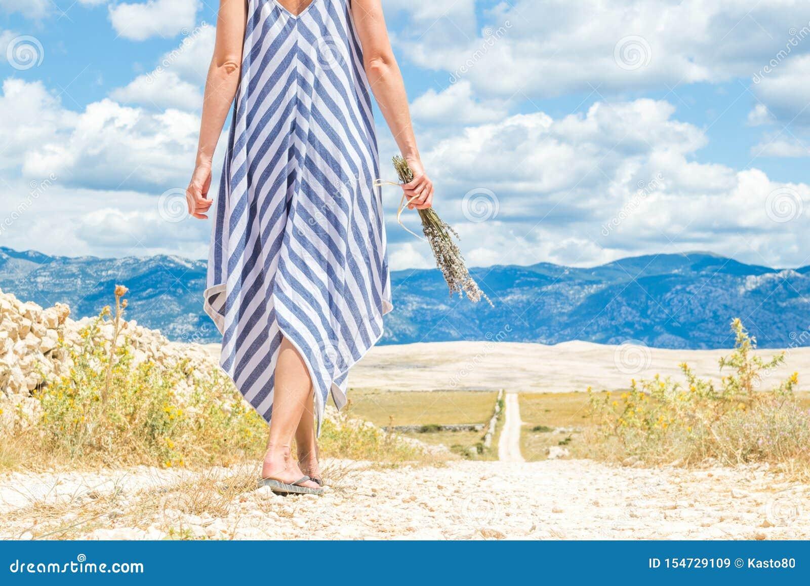 Szczegół kobieta w lato sukni mienia bukiecie lawenda kwitnie podczas gdy chodzący plenerowy przelotowy suchy skalistego