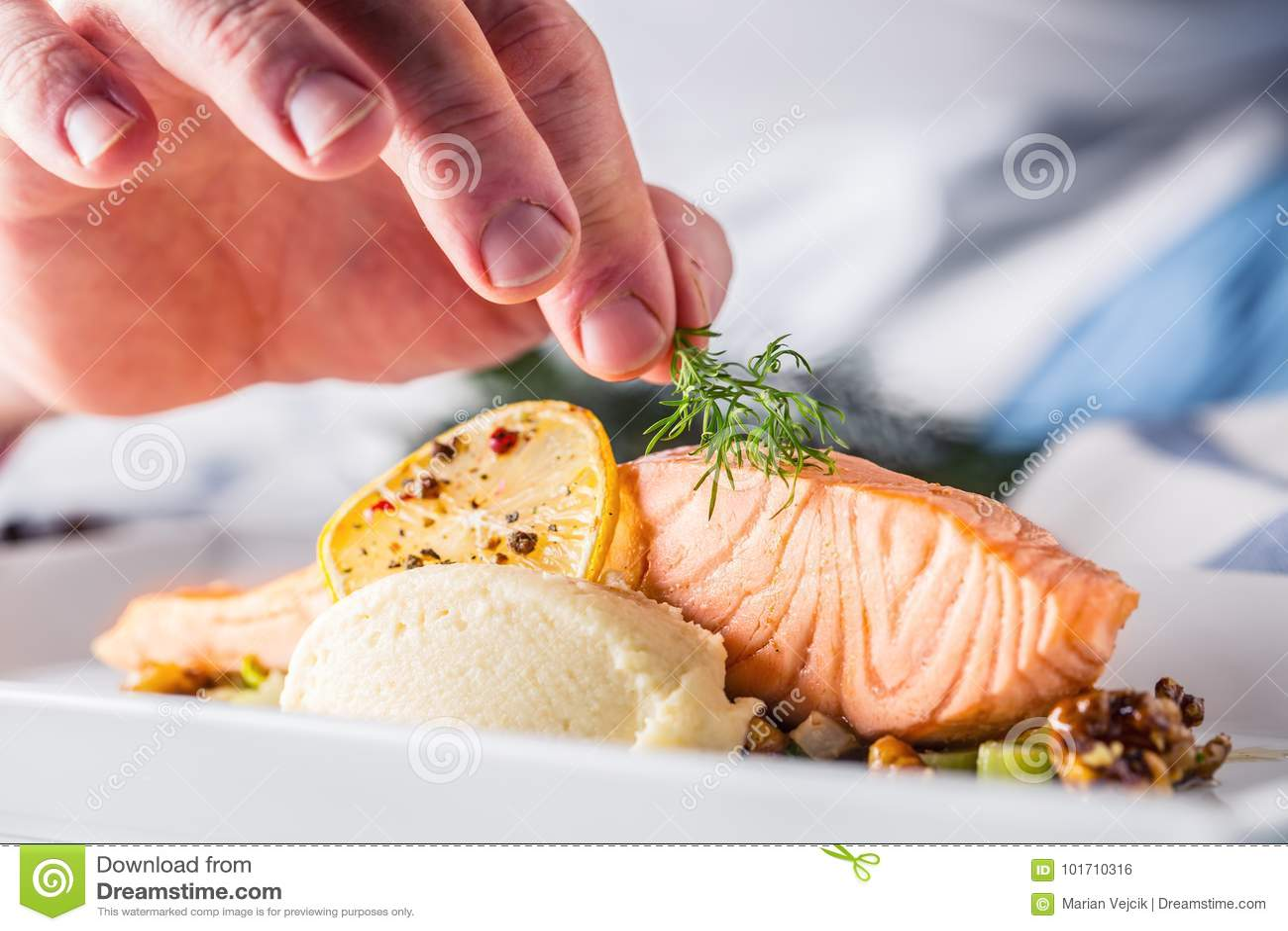 Szef kuchni w hotelowym lub restauracyjnym kuchennym kucharstwie ręka, tylko Przygotowany łososiowy stek z koperkową dekoracją
