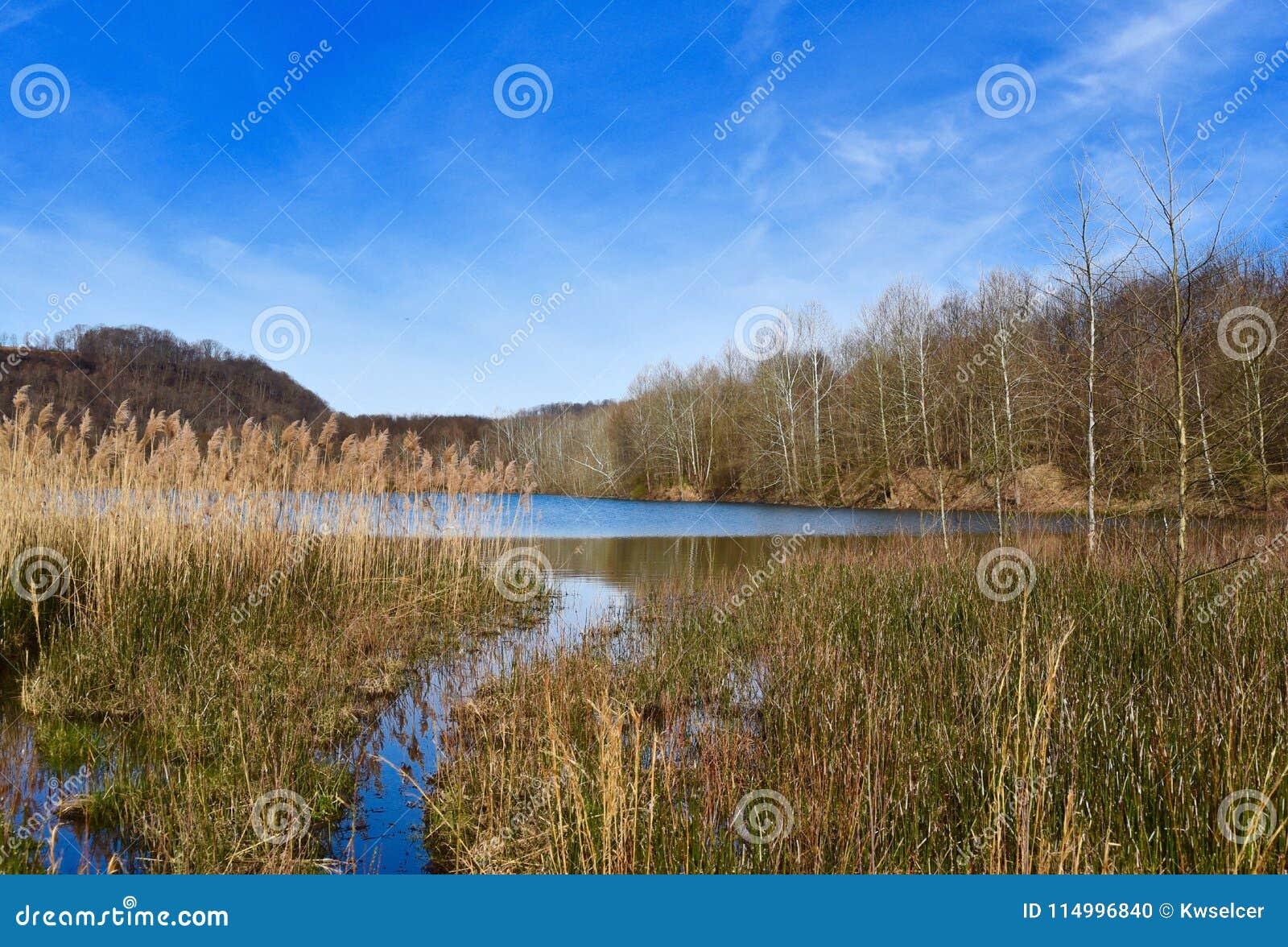 Szenische Landschaft von einem Sumpfgebiet und von See im Frühjahr