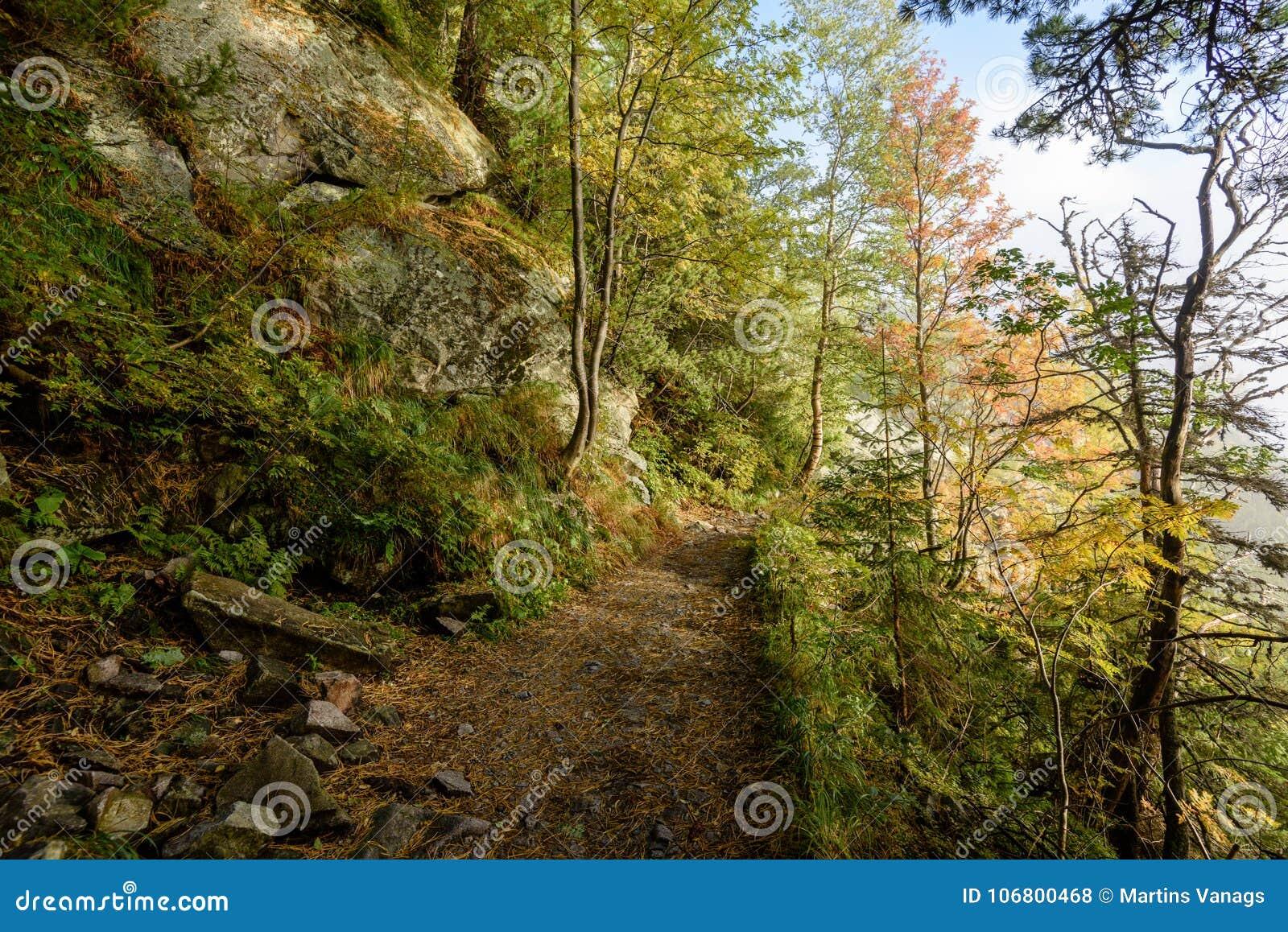 Download Szenische Und Schöne Tourismusspur Im Park Slovensky-raj, SL Stockfoto - Bild von teich, straße: 106800468