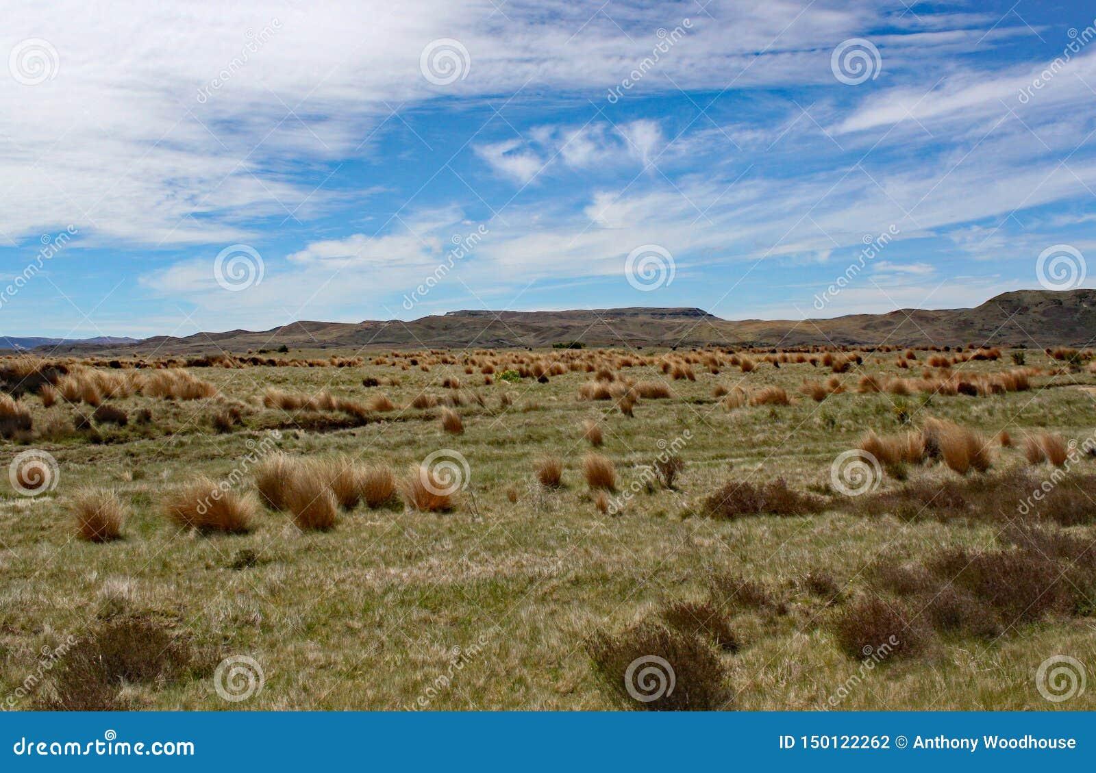 Szeroko otwarty przestrzenie waikato region Nowa Zelandia