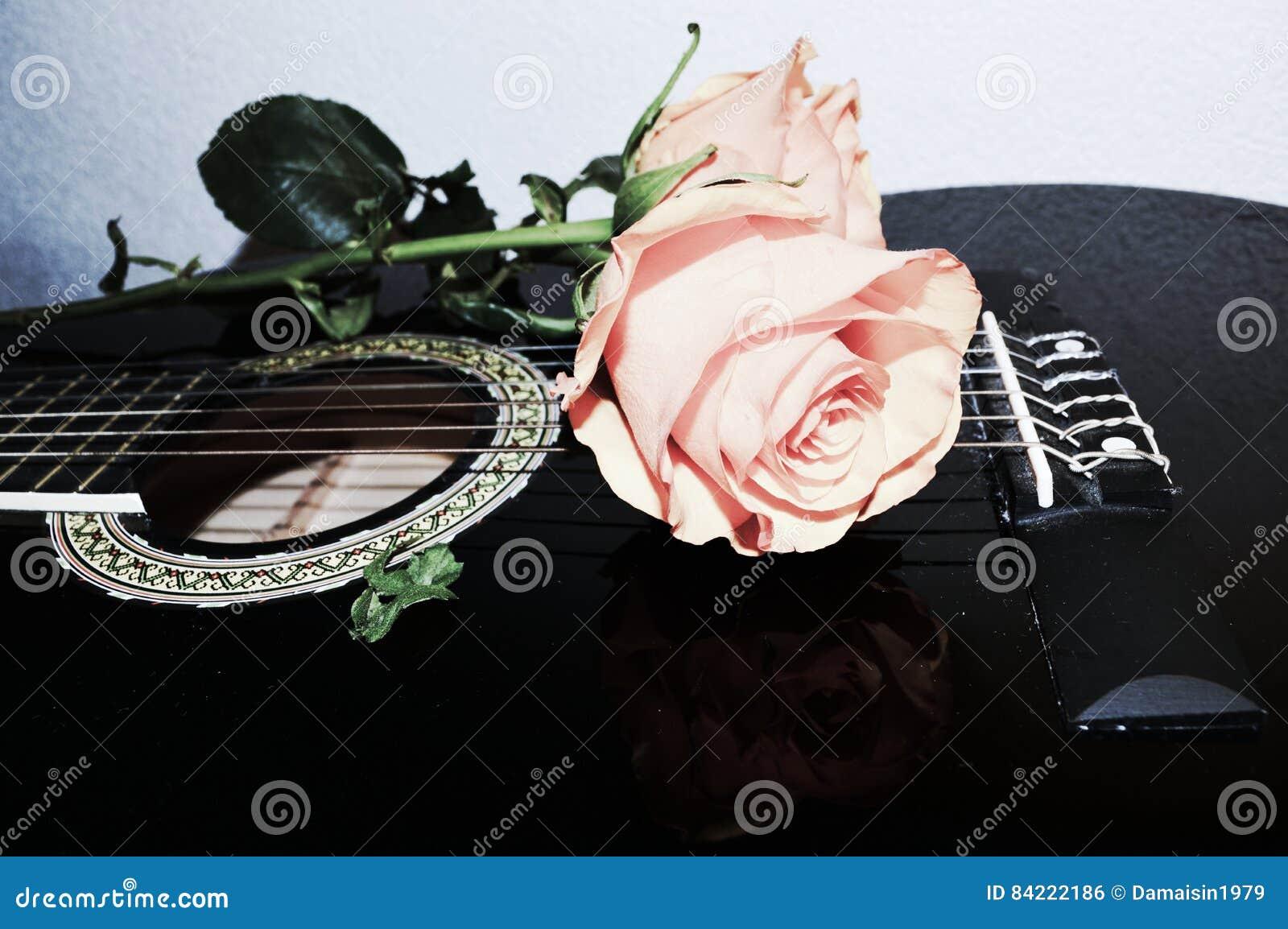Sznurki i róże, symbole