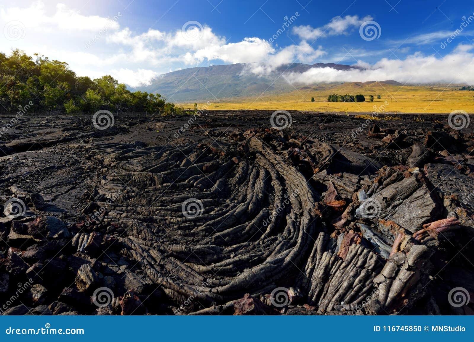 Szorstka powierzchnia zamarznięta lawa po Mauna Loa wulkanu erupci na Dużej wyspie, Hawaje