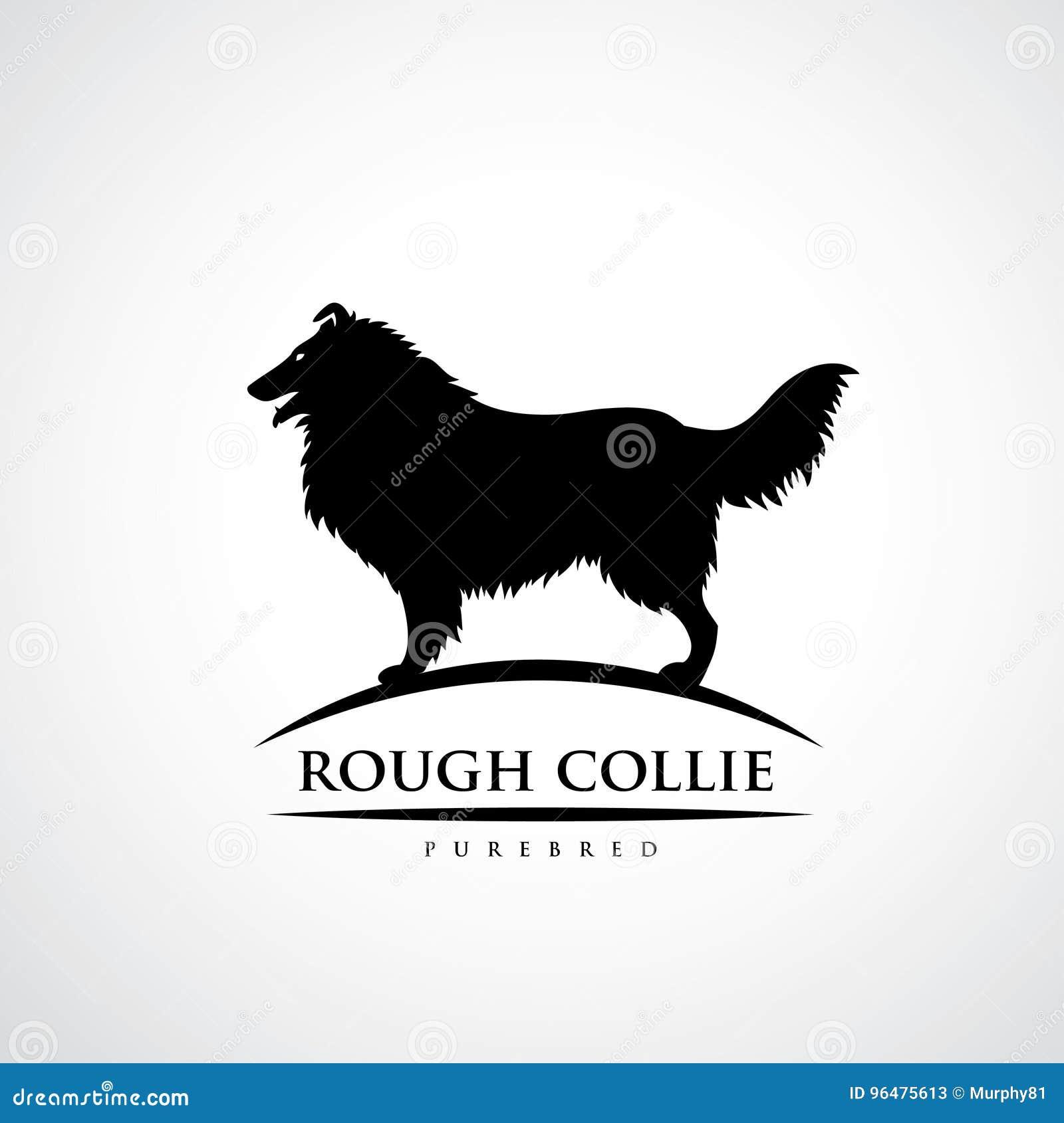 Szorstki Collie pies - wektorowa ilustracja