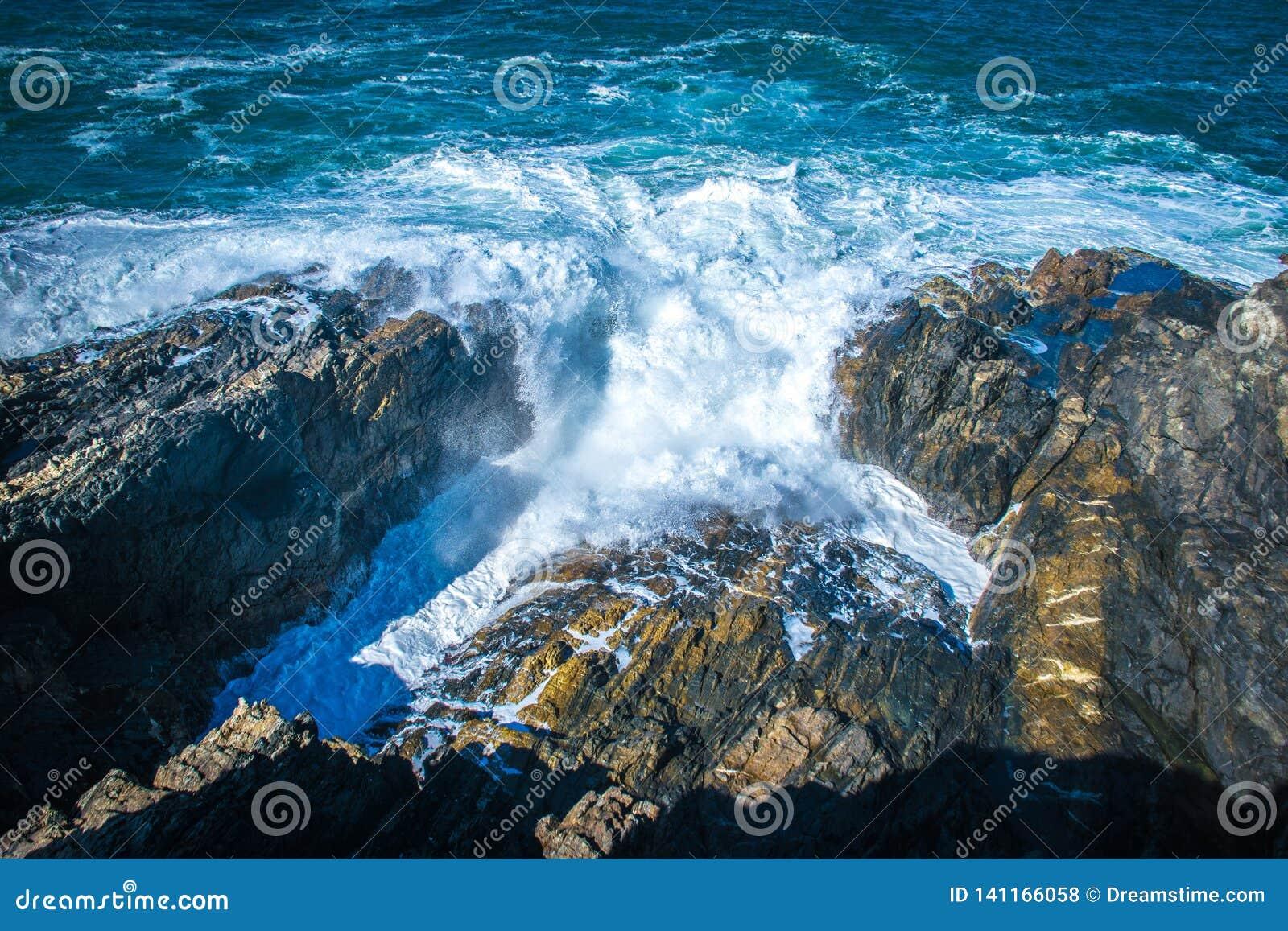 Szorstkie wody w Byron zatoce