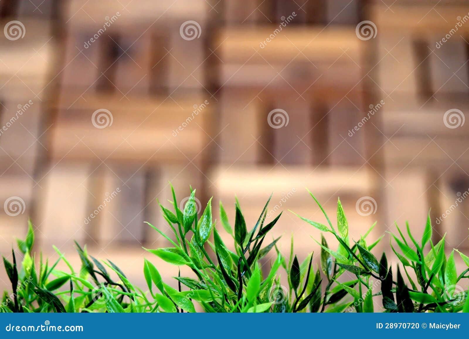 Sztuczna trawy rama z Drewnianym tłem