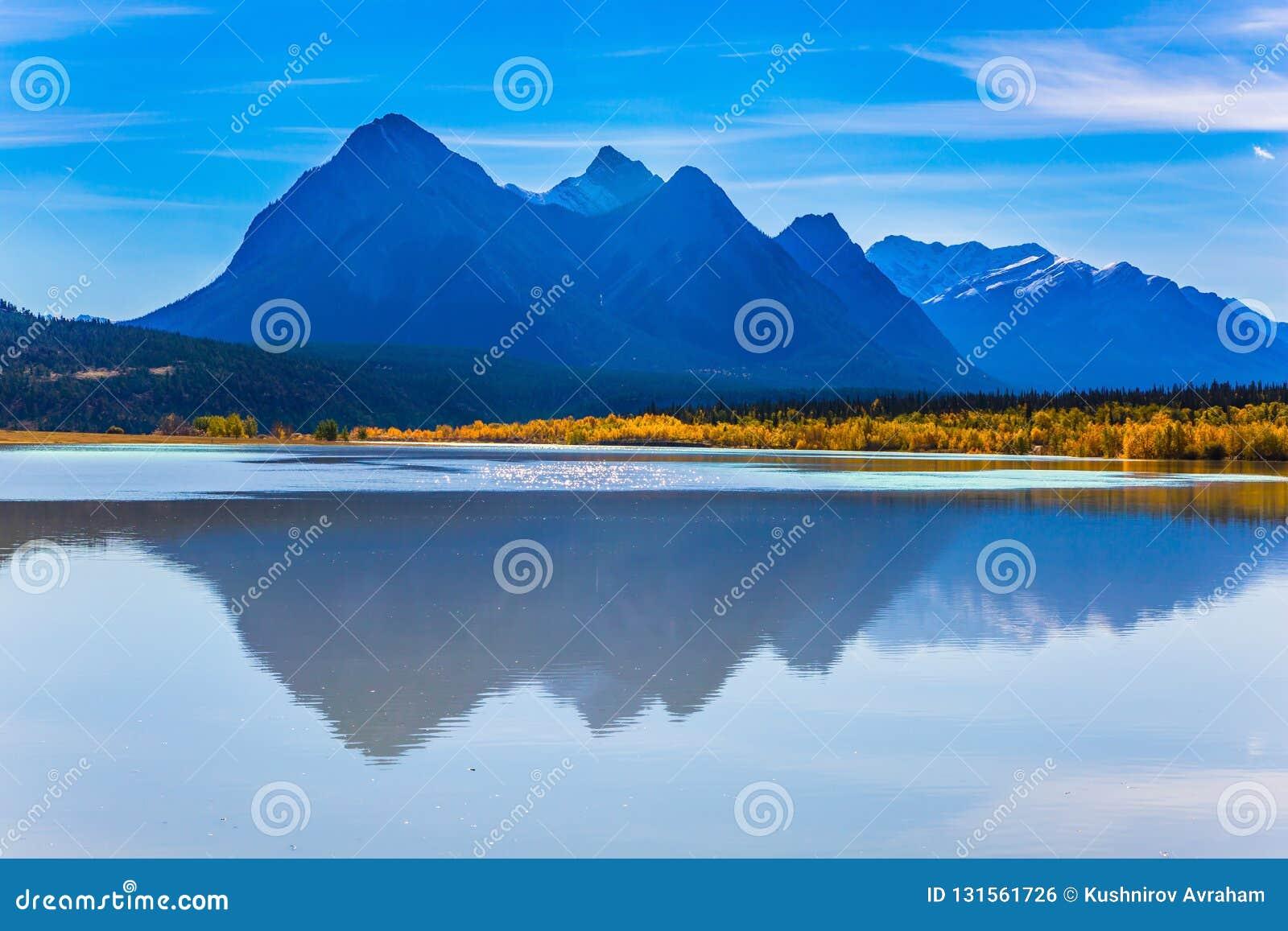 Sztuczny Abraham jezioro odbija złotego ulistnienie osika i brzozy Rozjarzeni błękitni i złoto kolory