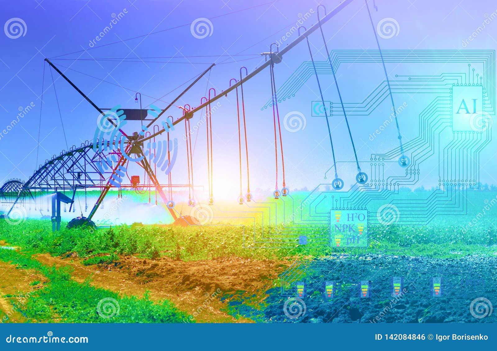 Sztuczny system irygacyjny przyszłość ustala stopień irygacja i wypłukiwanie użyźniacze od ziemi