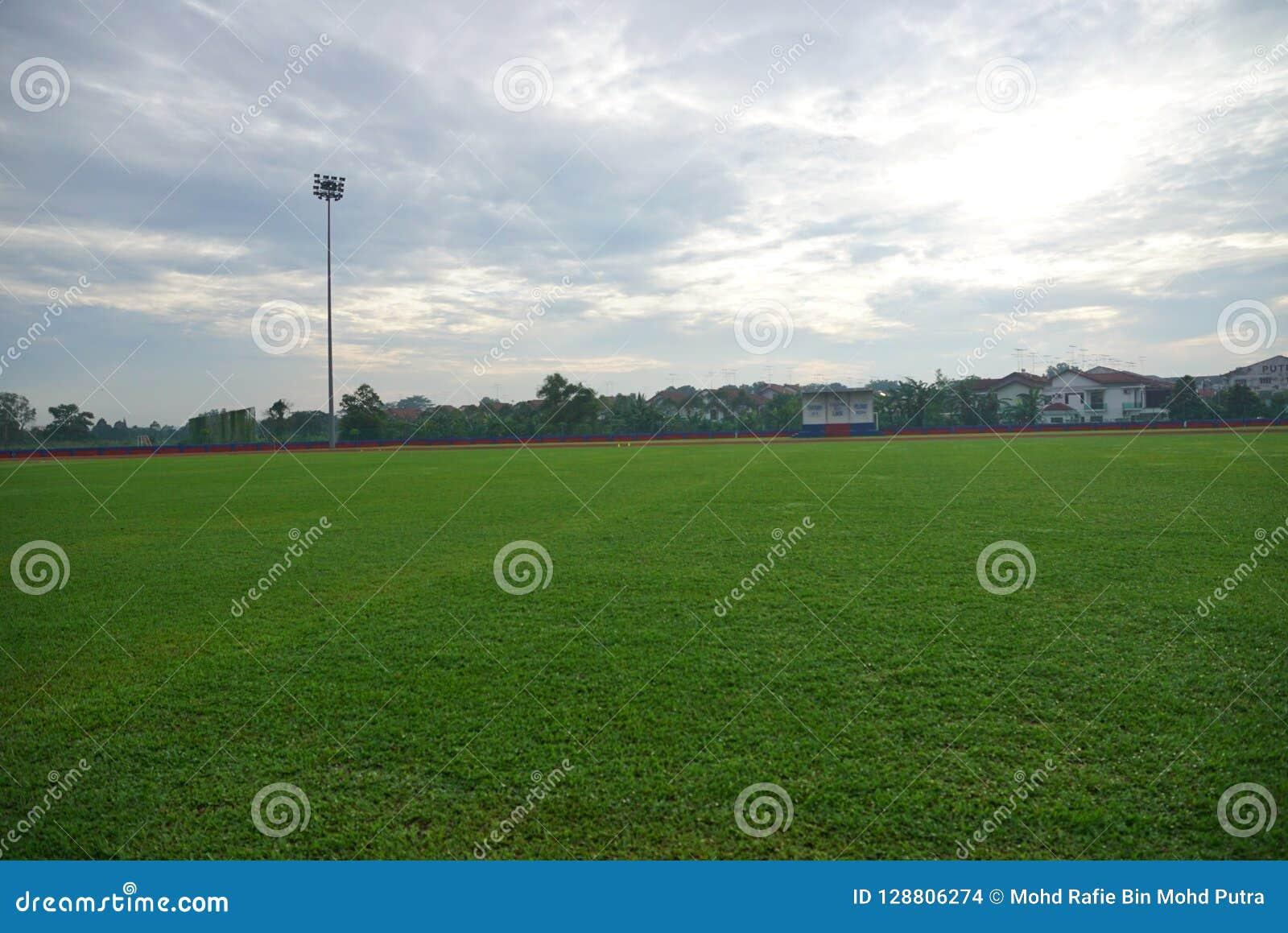 Sztuczny zawody atletyczni z zieloną trawą łączył z sztuczną trawą
