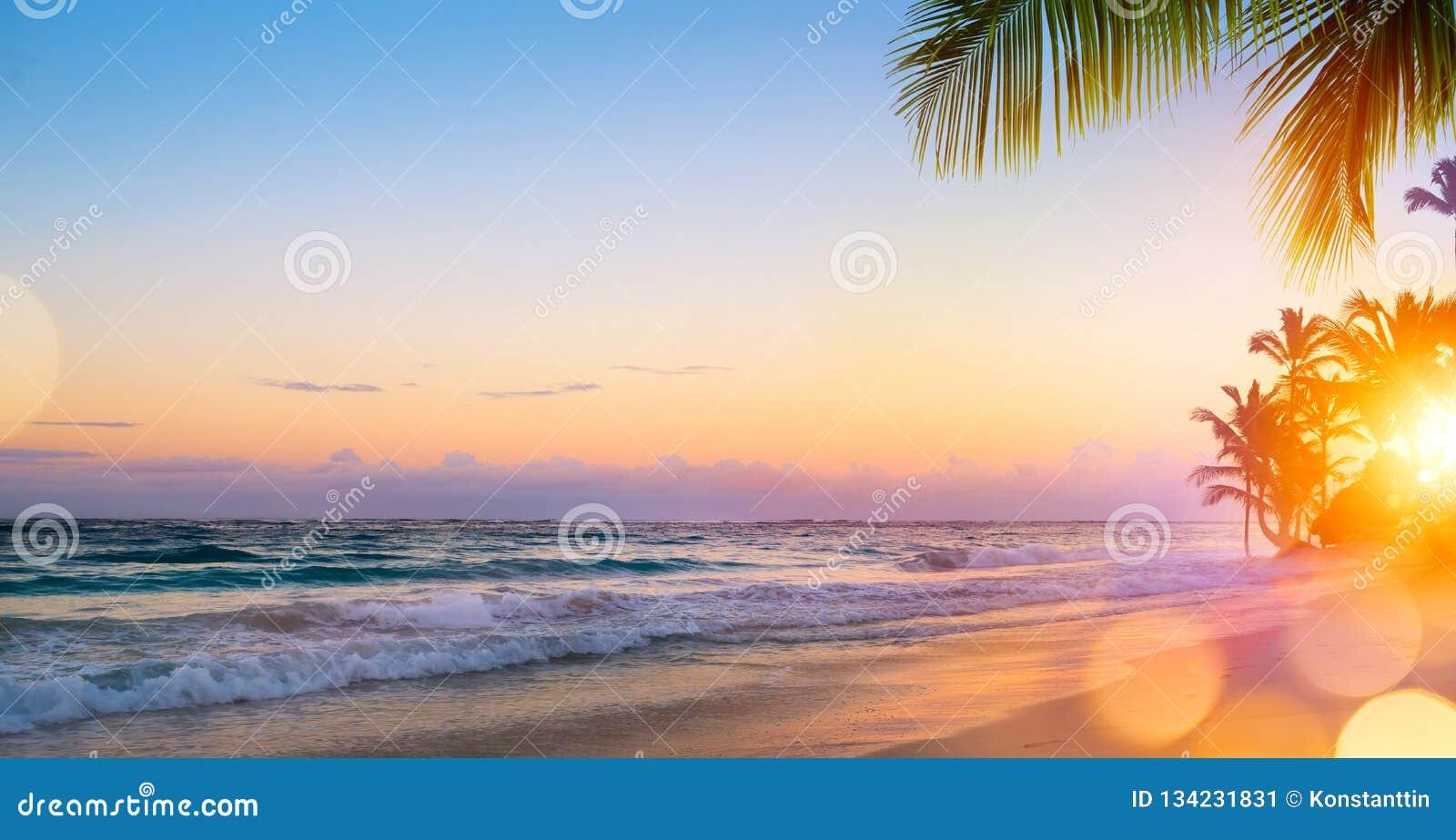Sztuka Piękny wschód słońca nad tropikalną plażą