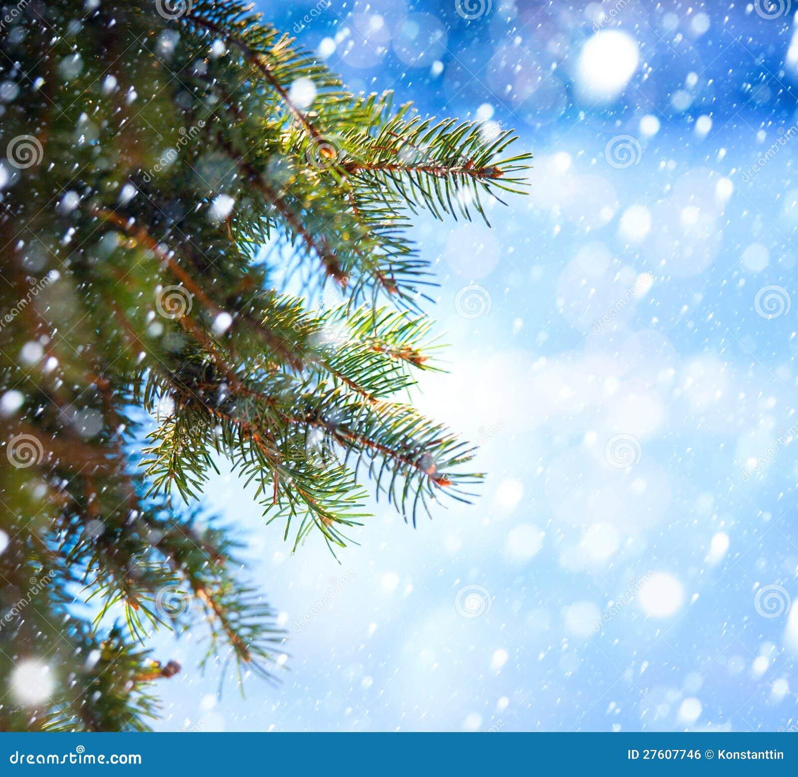 Sztuki Choinki gałąź i śnieżny spadek