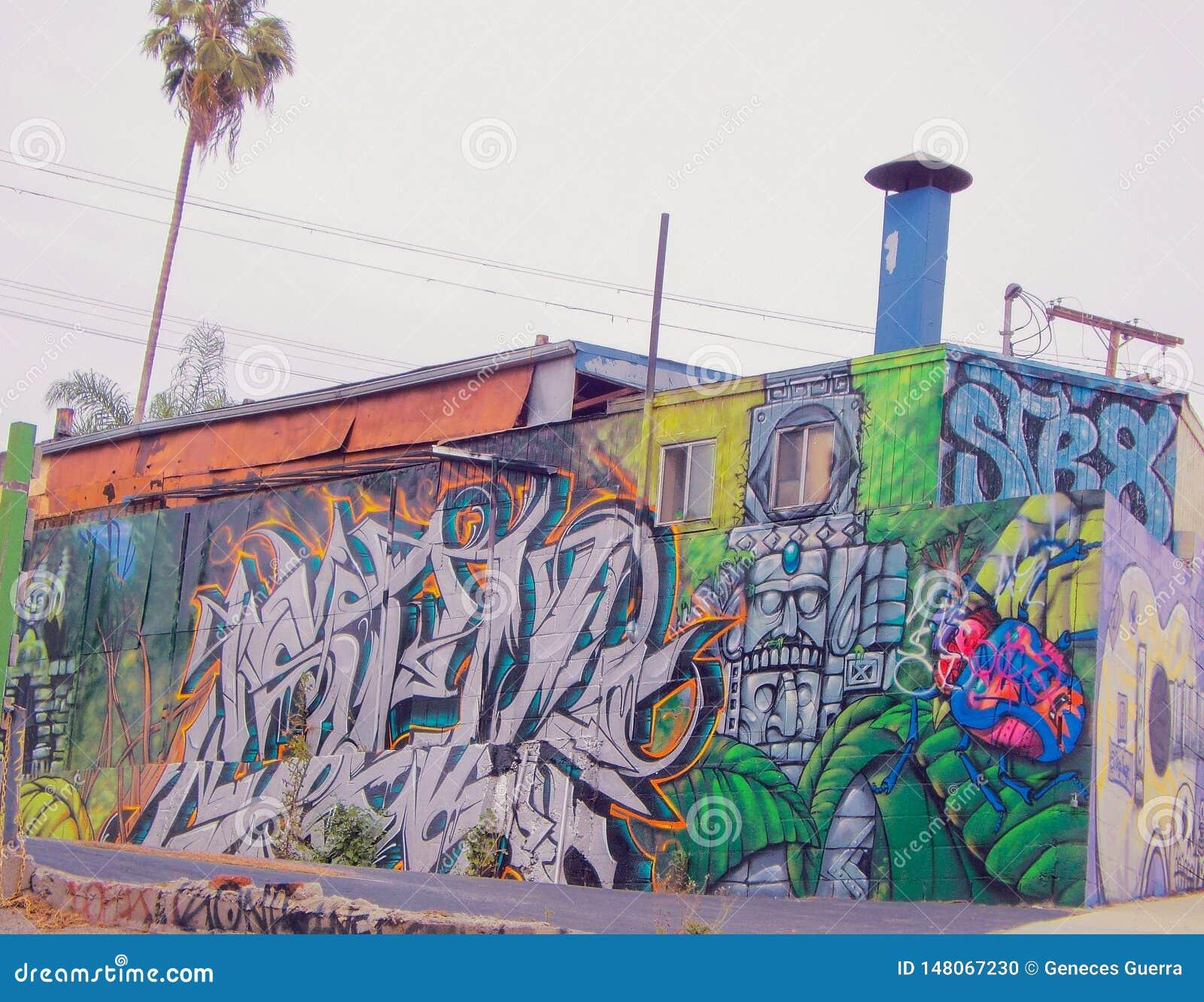 Sztuki kolorowa zakrywaj?ca graffiti ulicy ?ciana